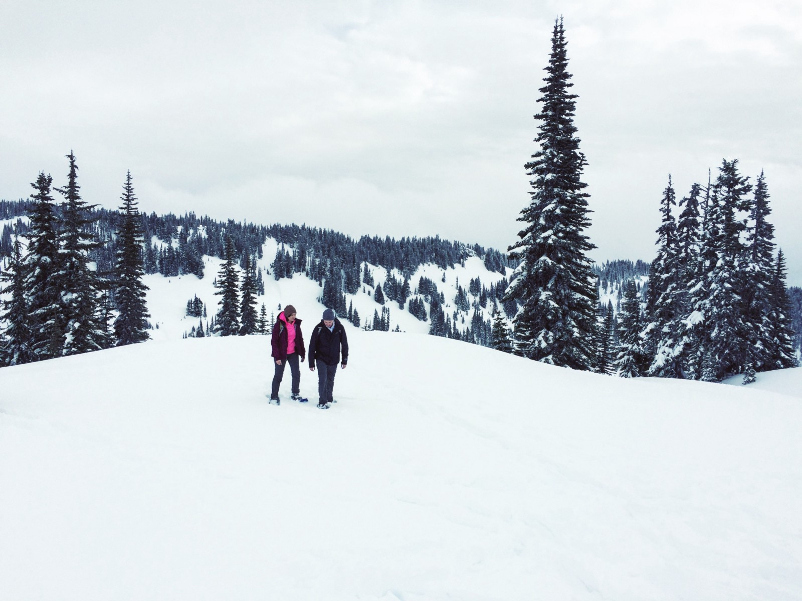 Out taking a stroll on a snow covered volcano