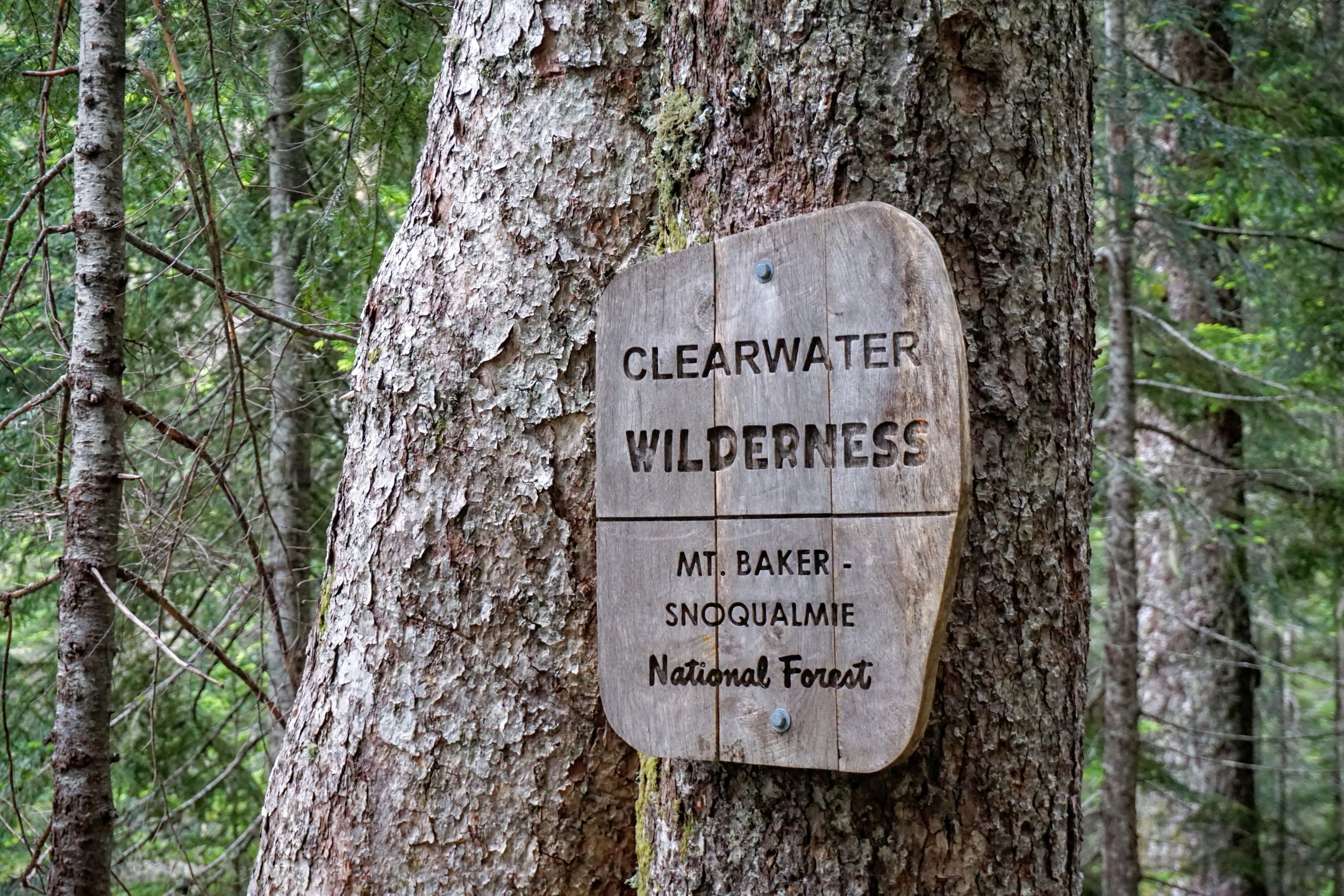 Clearwater Wilderness