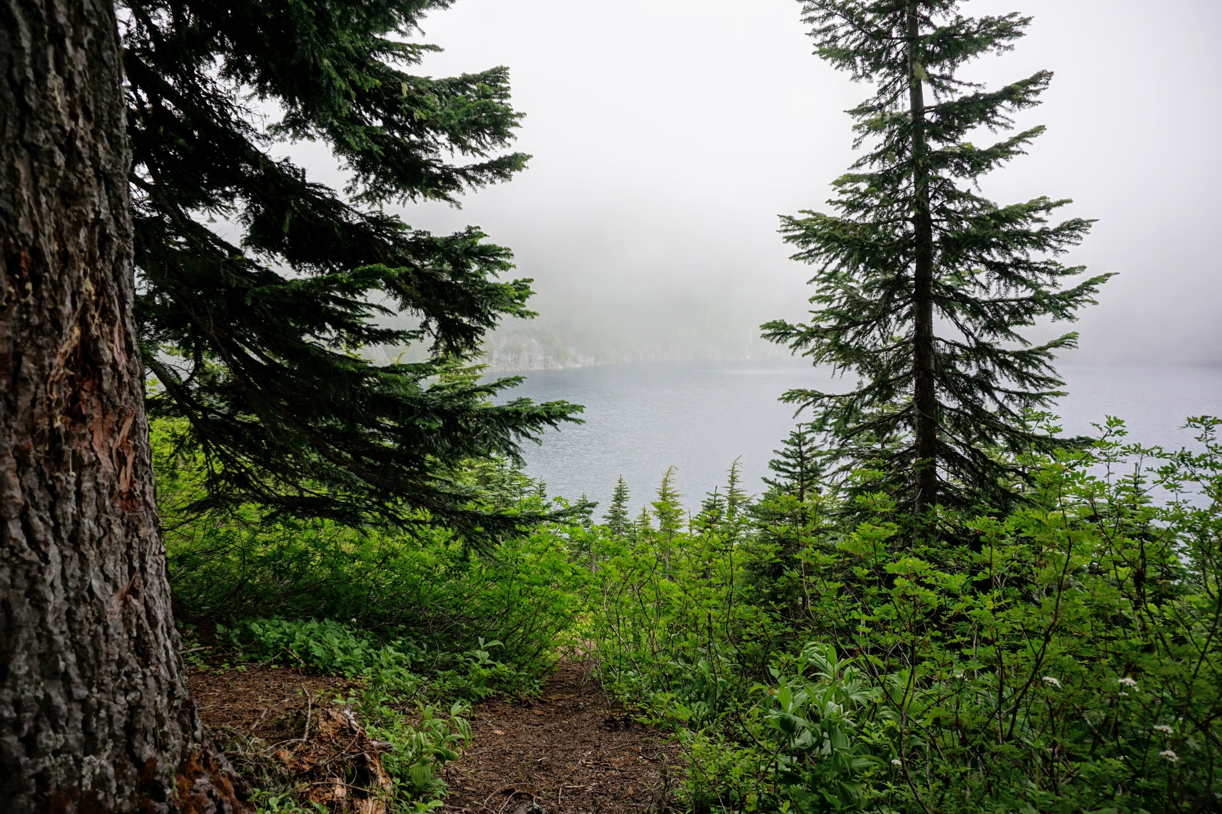 A Foggy Summit Lake