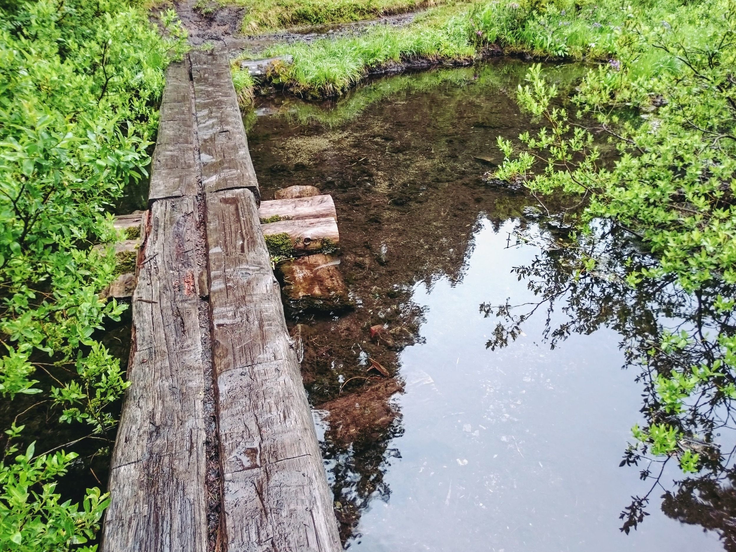 Foot Bridge at Lake Christine
