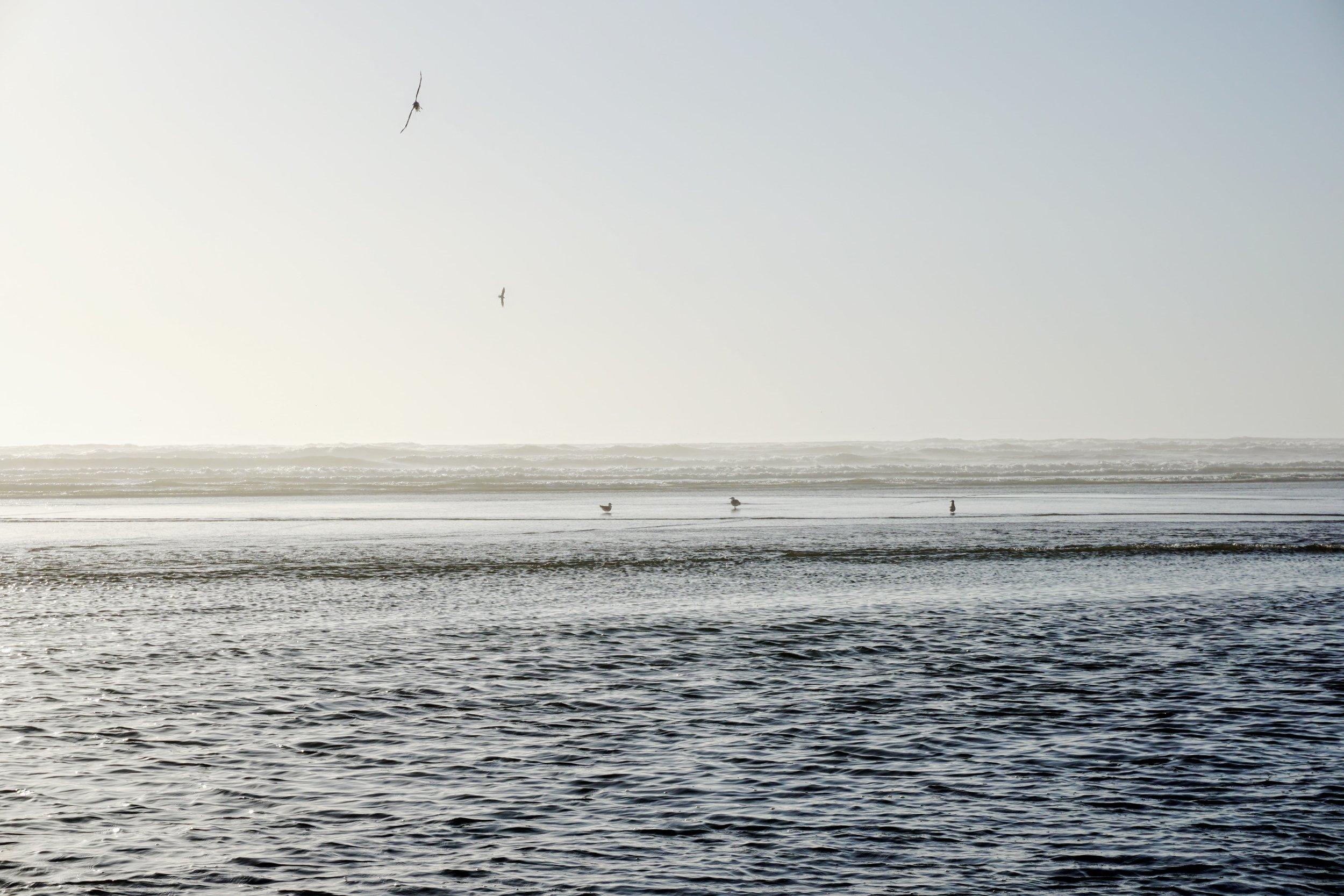 Pacific Beach