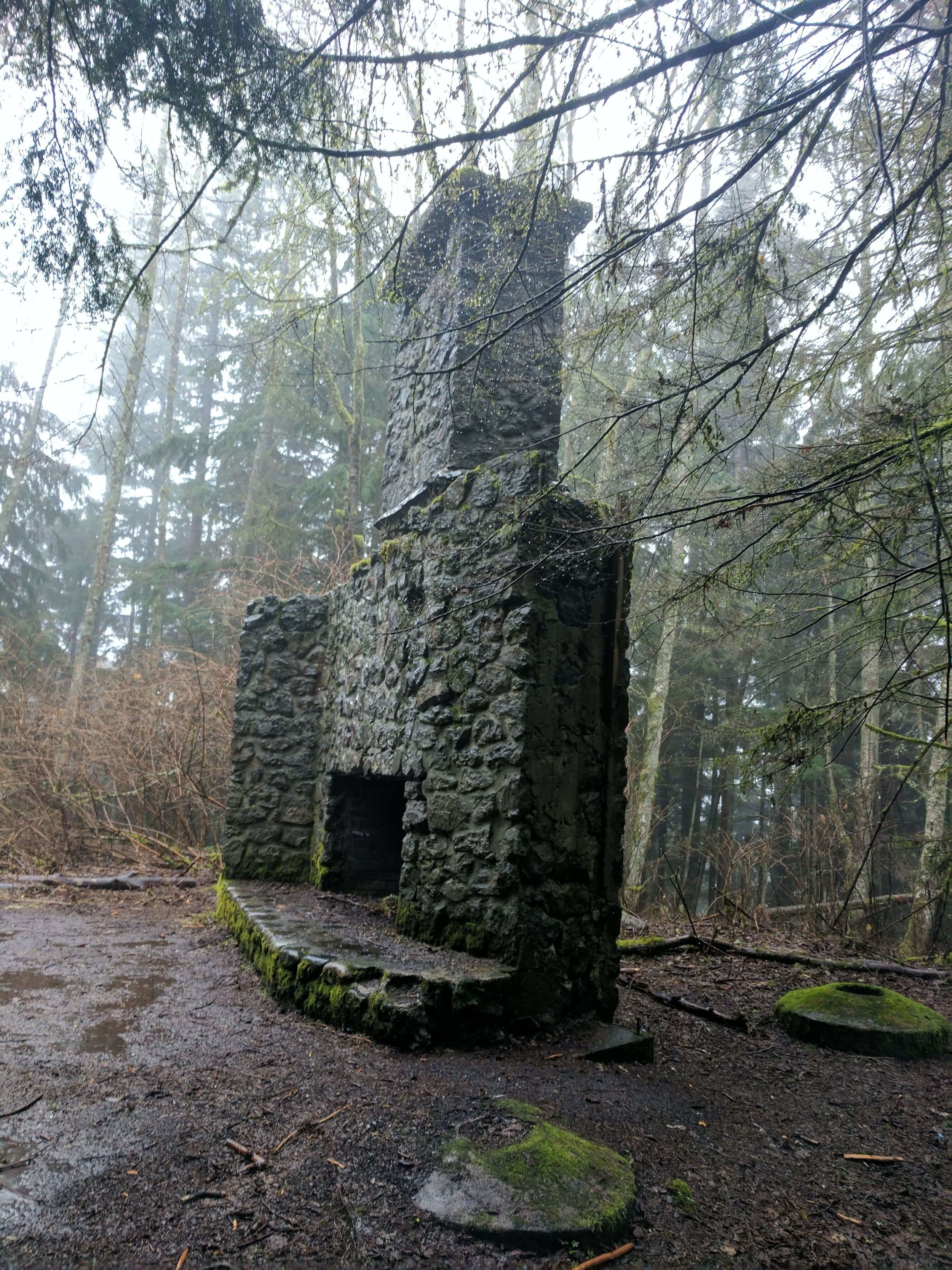 Squak Mountain State Park 06 - Pacific North Wanderers.jpg