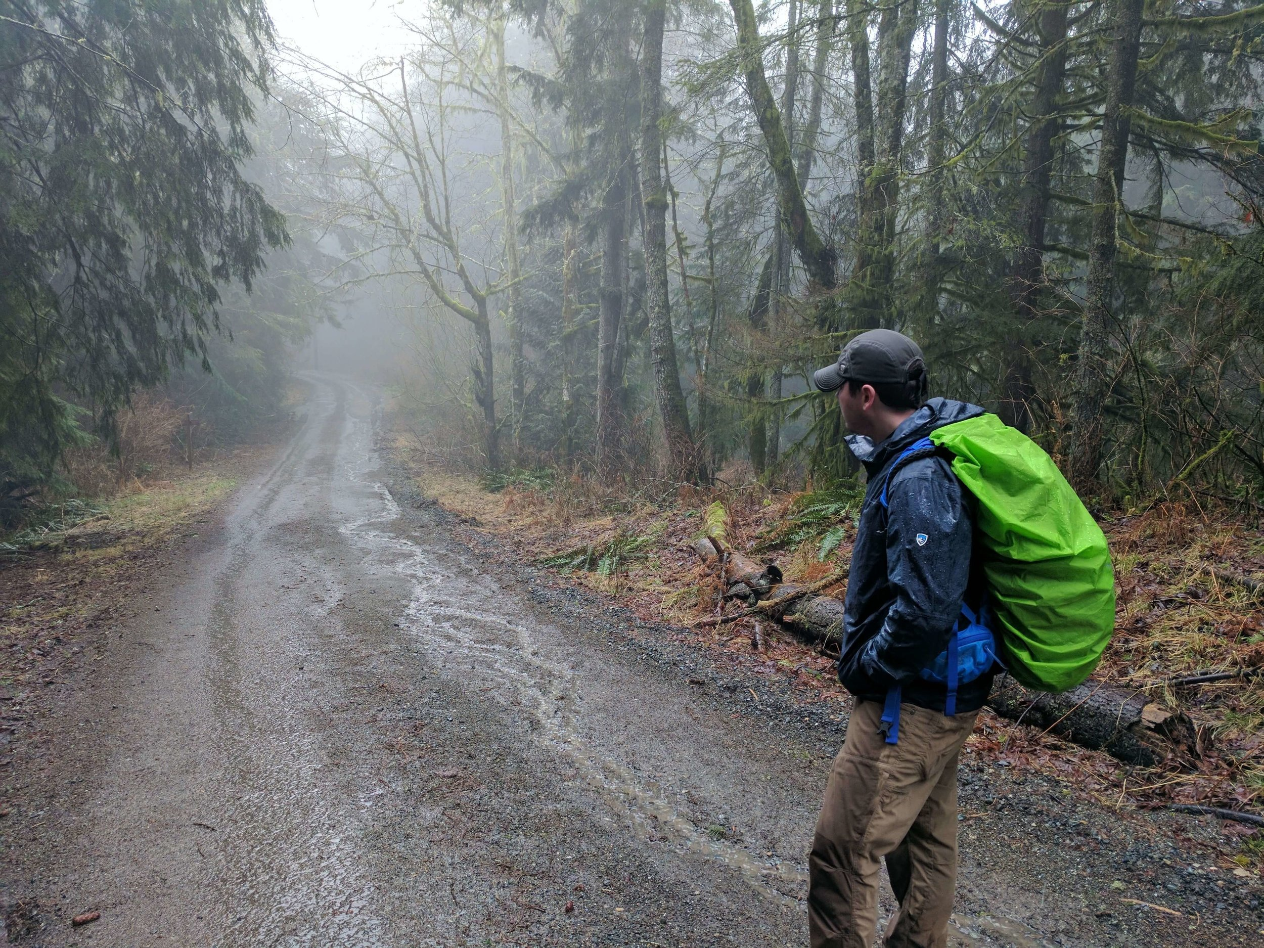 Squak Mountain State Park 04 - Pacific North Wanderers.jpg