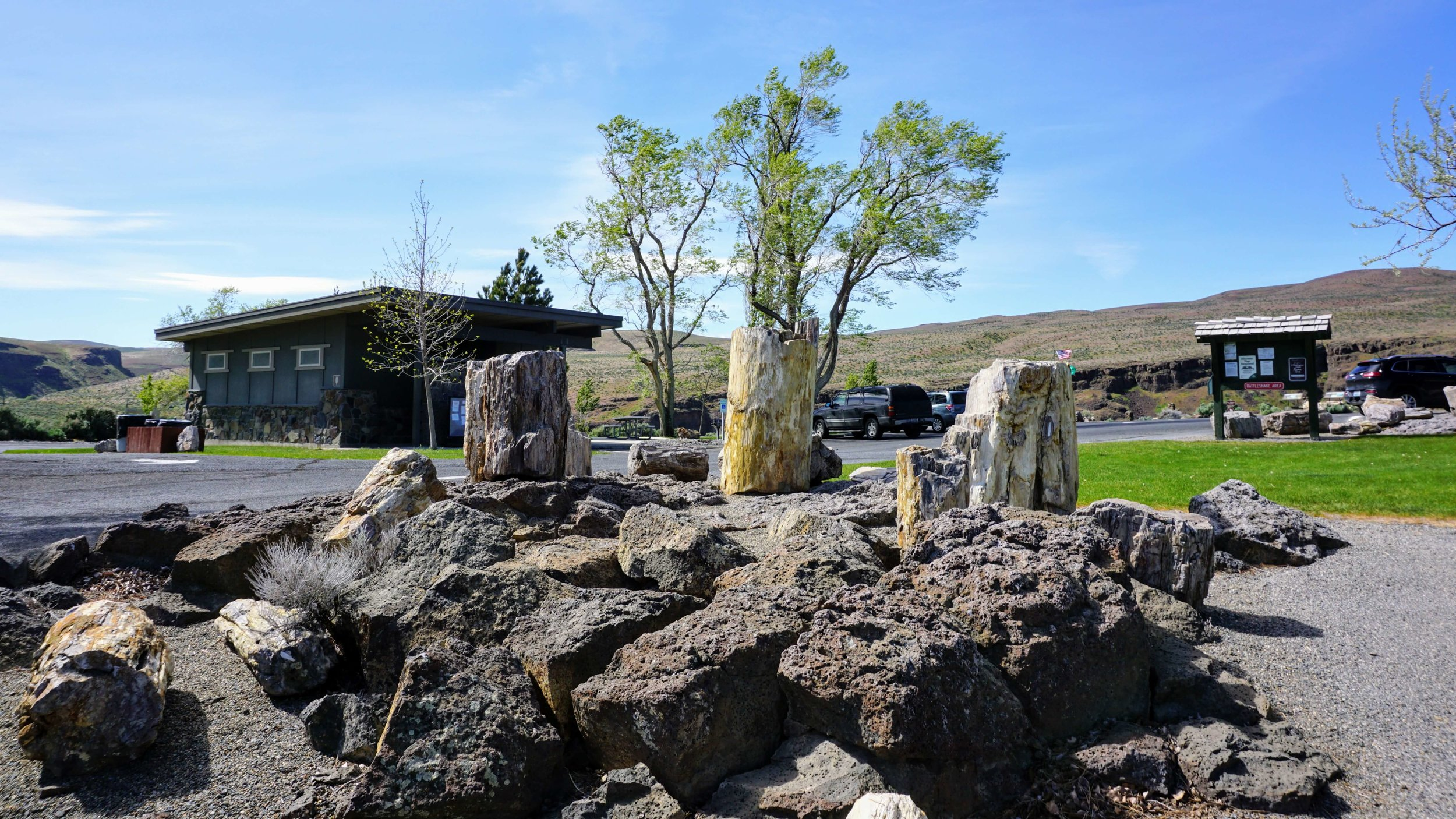 Petrified Forest Museum