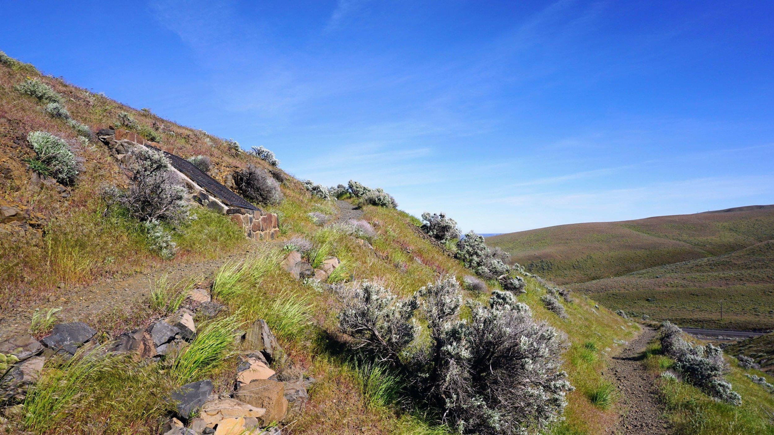 Trees of Stone Interpretive Trail