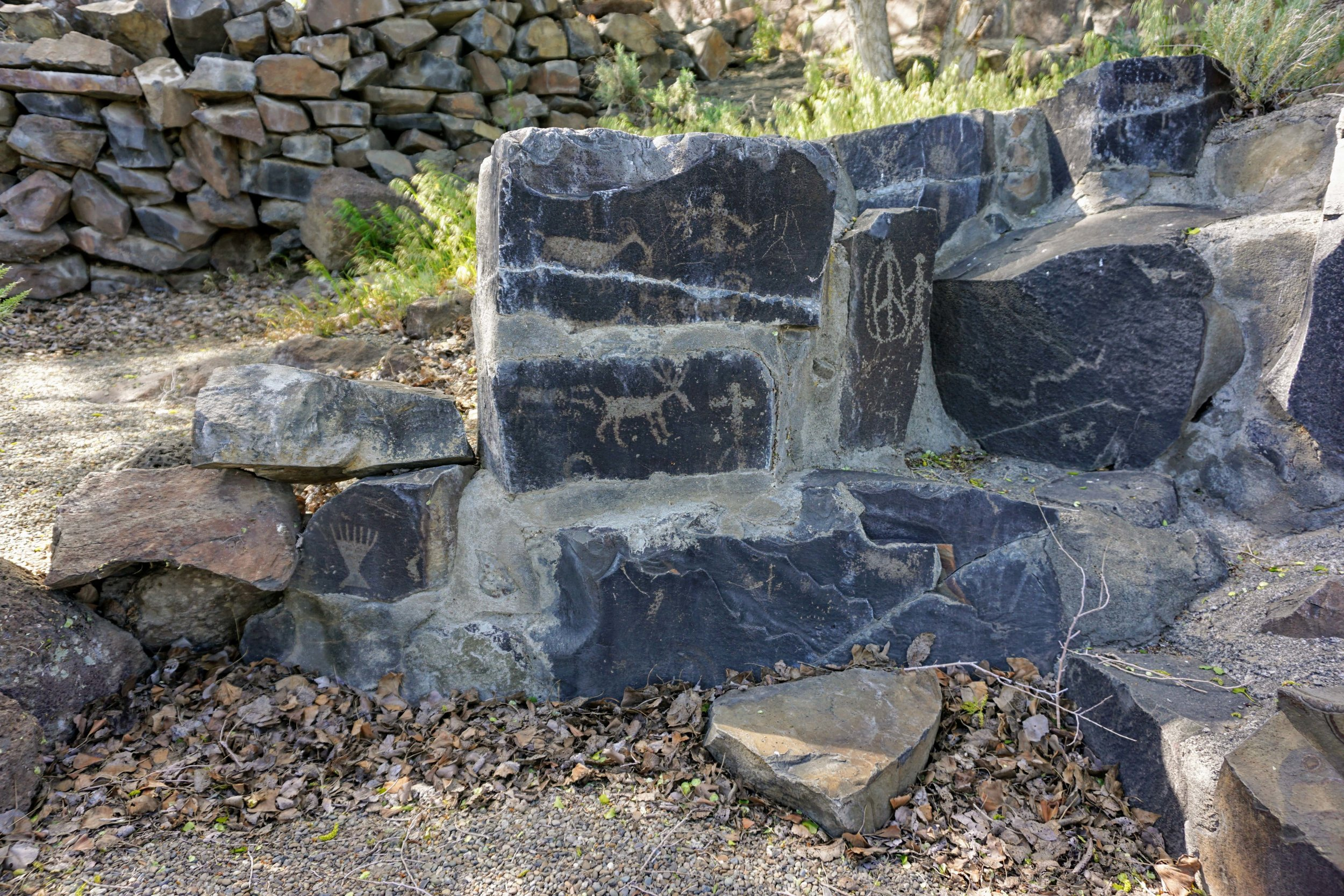 Petroglyphs at Ginkgo Petrified Forest State Park