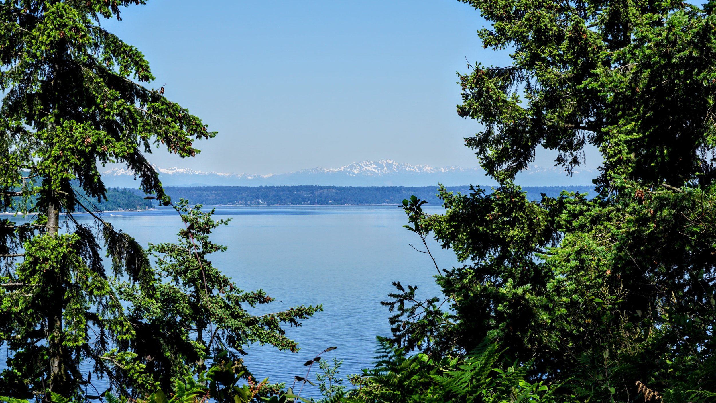 Olympic Mountains seen from Saltwater State Park