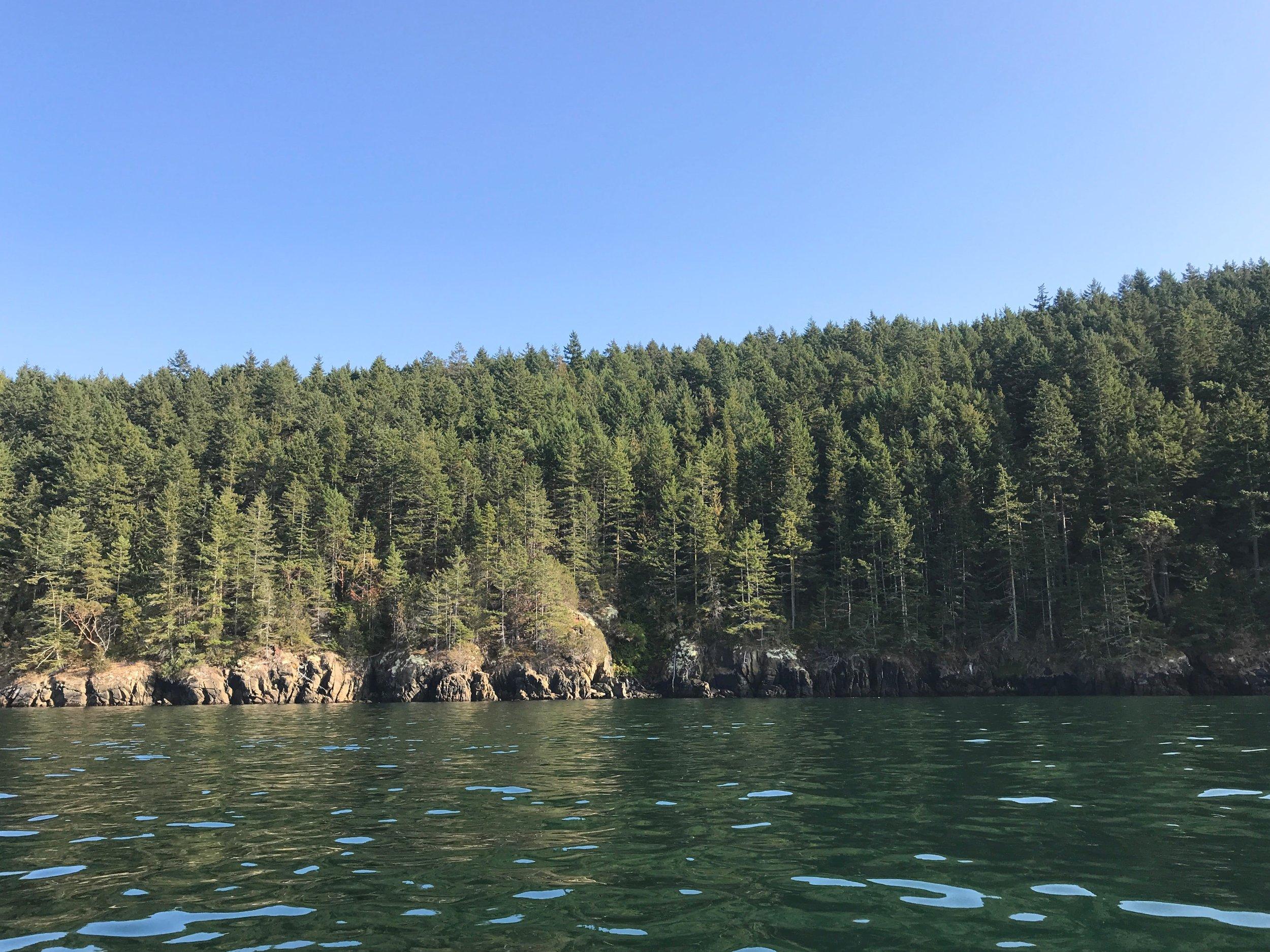 Burrows Island