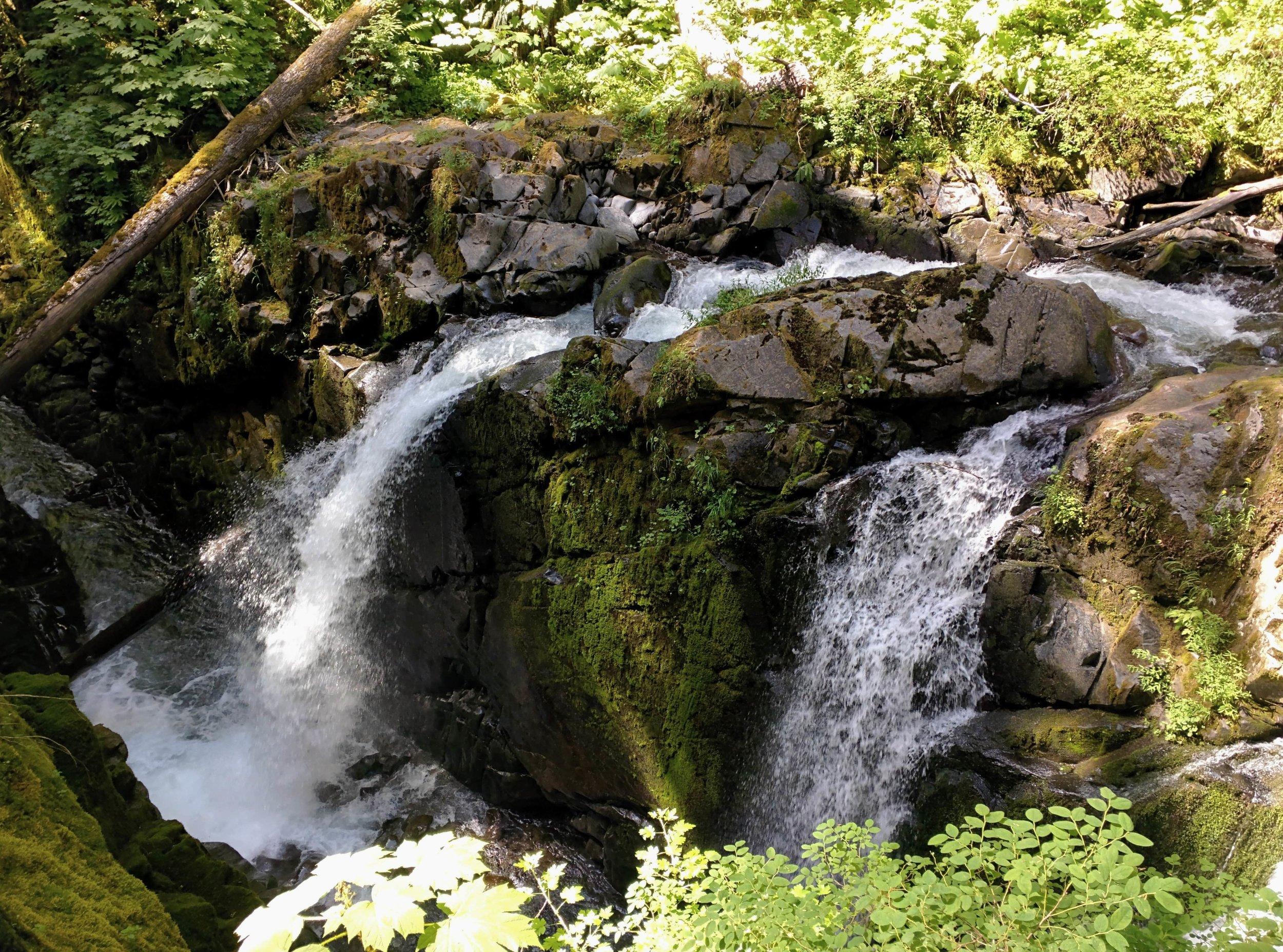 Sol Duc Falls - Pacific North Wanderers.jpg