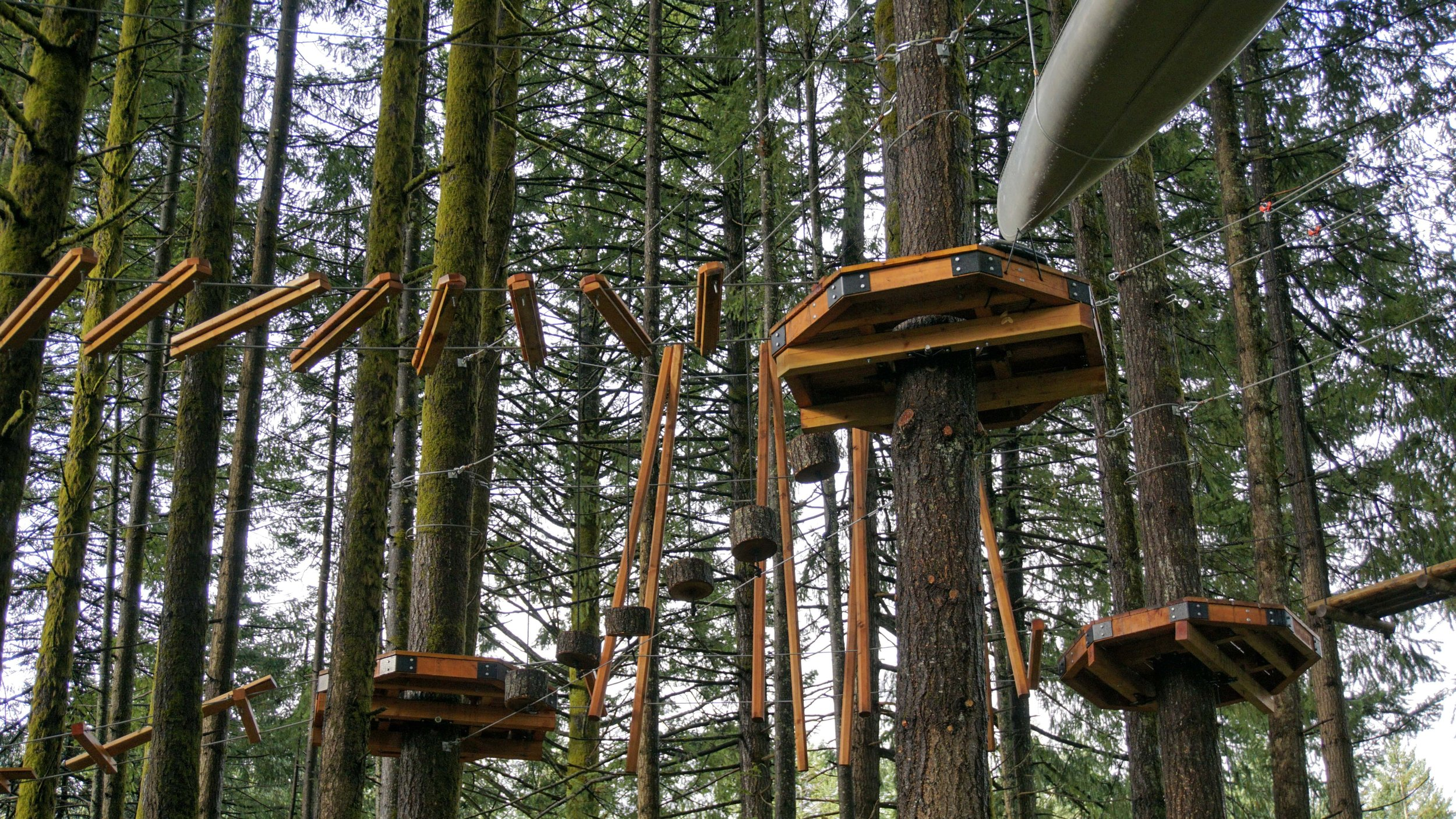 Skamania Lodge Aerial Park - Pacific North Wanderers.jpg