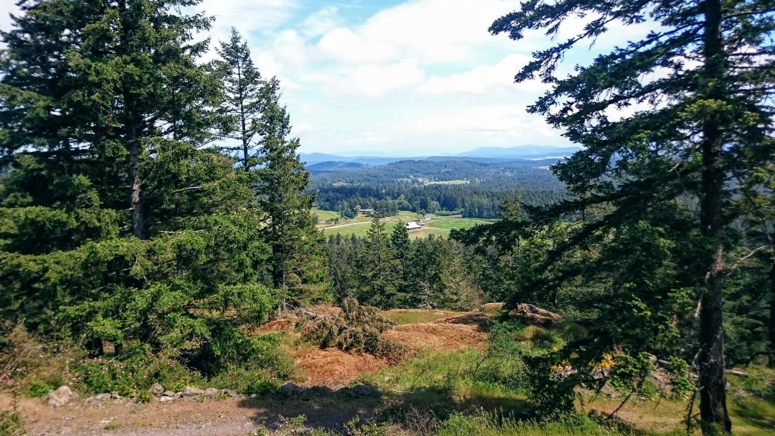 Mount Grant - Pacific North Wanderers.jpg
