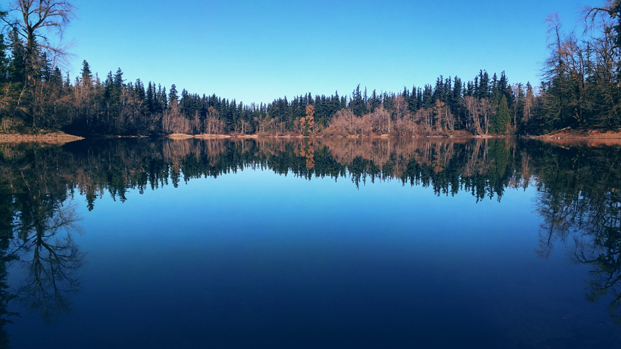 Nolte State Park - Pacific North Wanderers.jpg