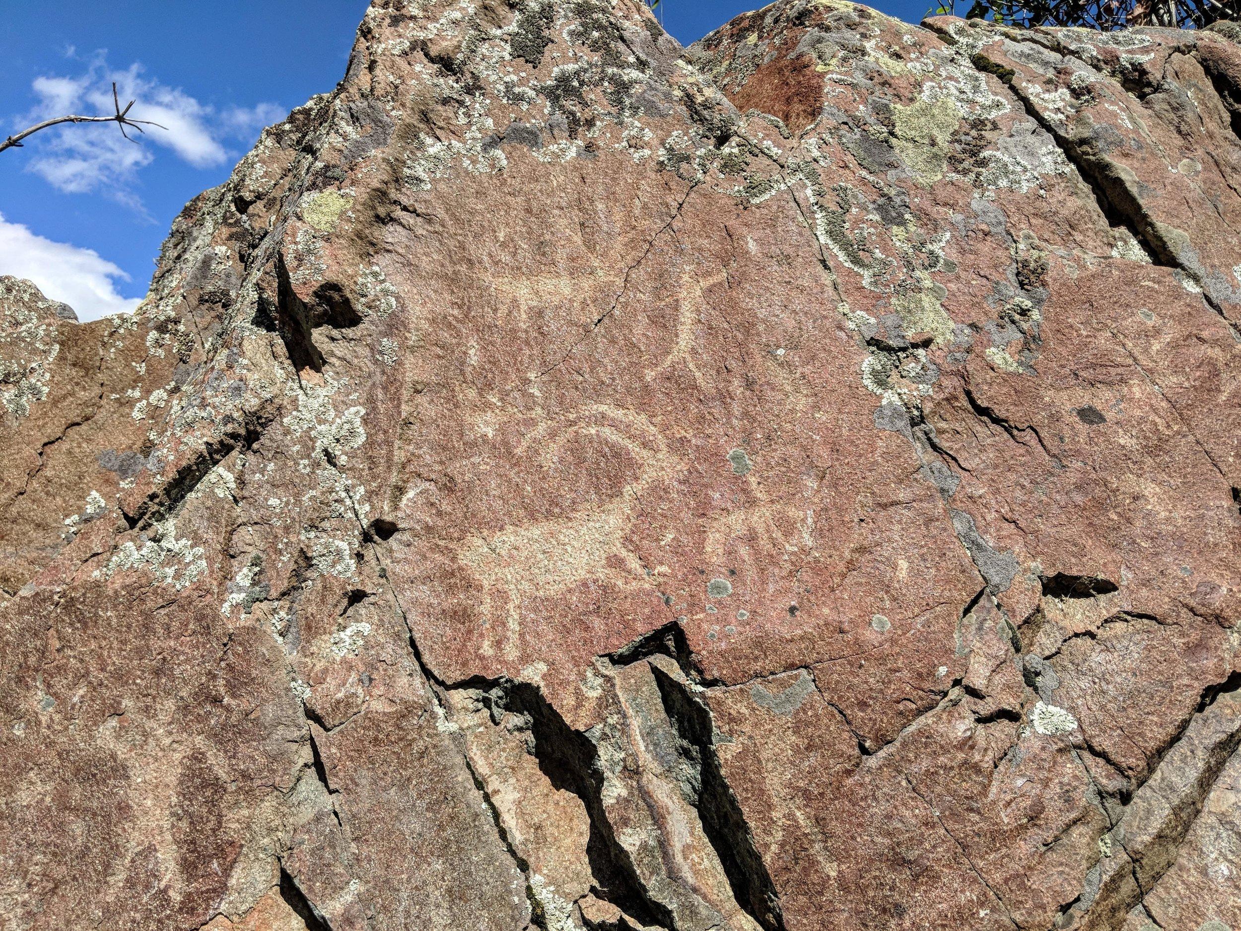 Petroglyhps