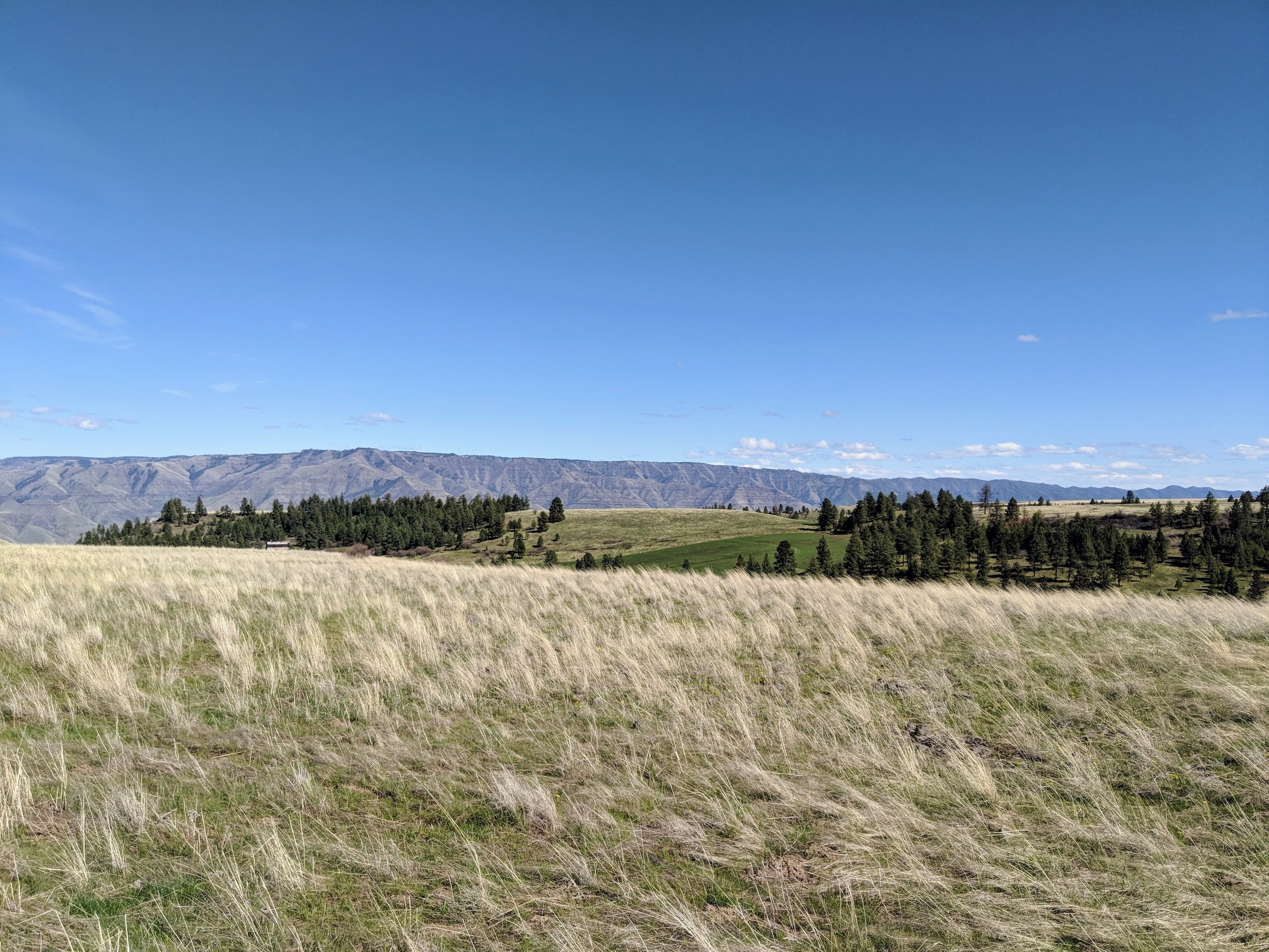 The Views!