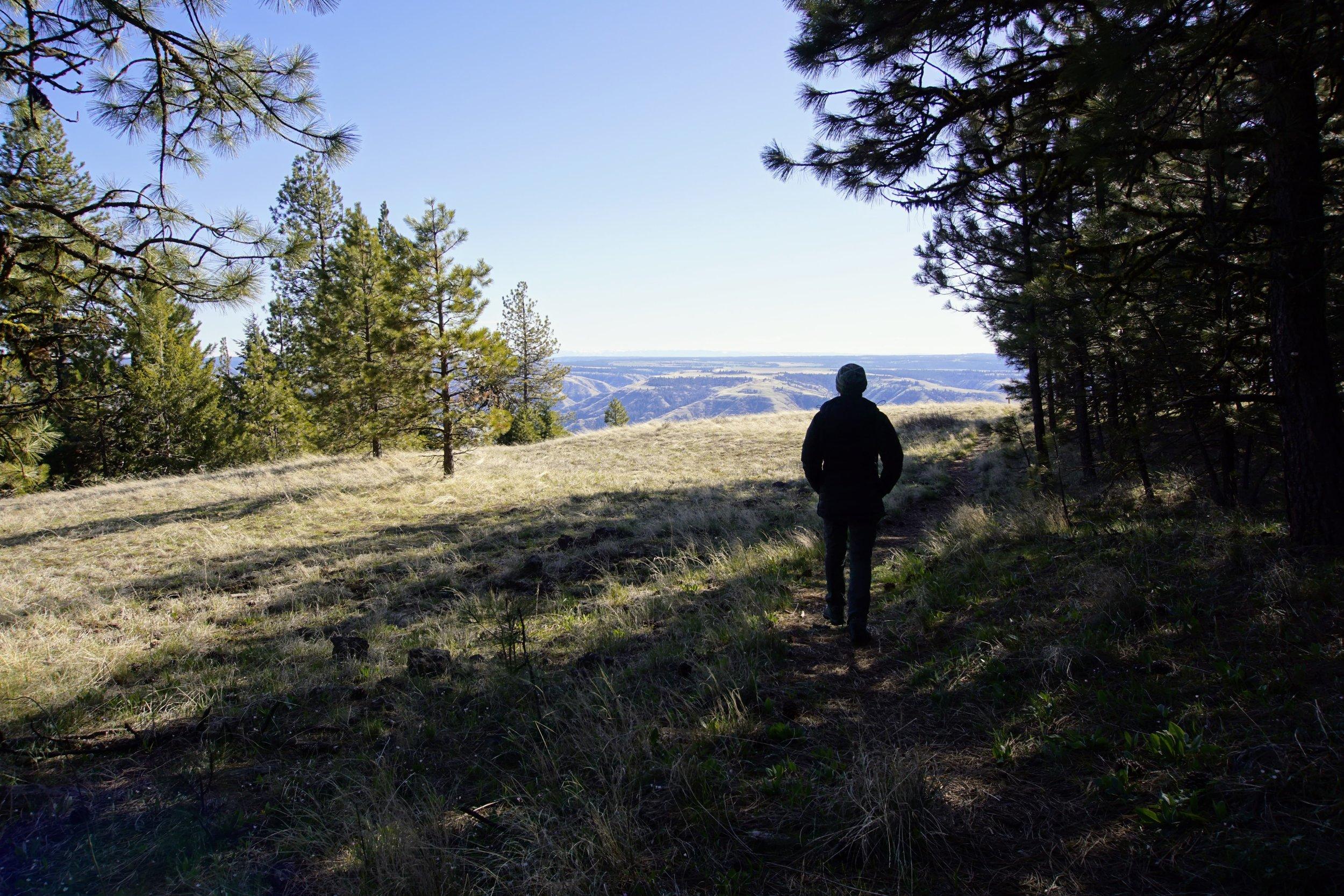 Top of Puffer Butte