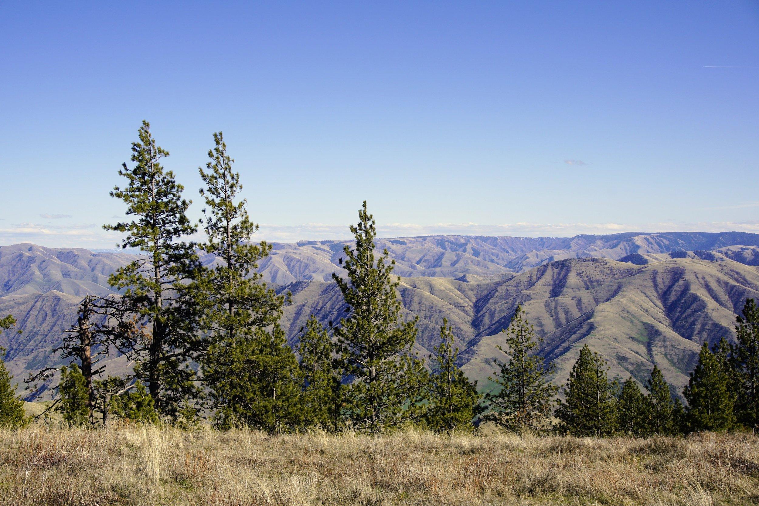 Views from Puffer Butte