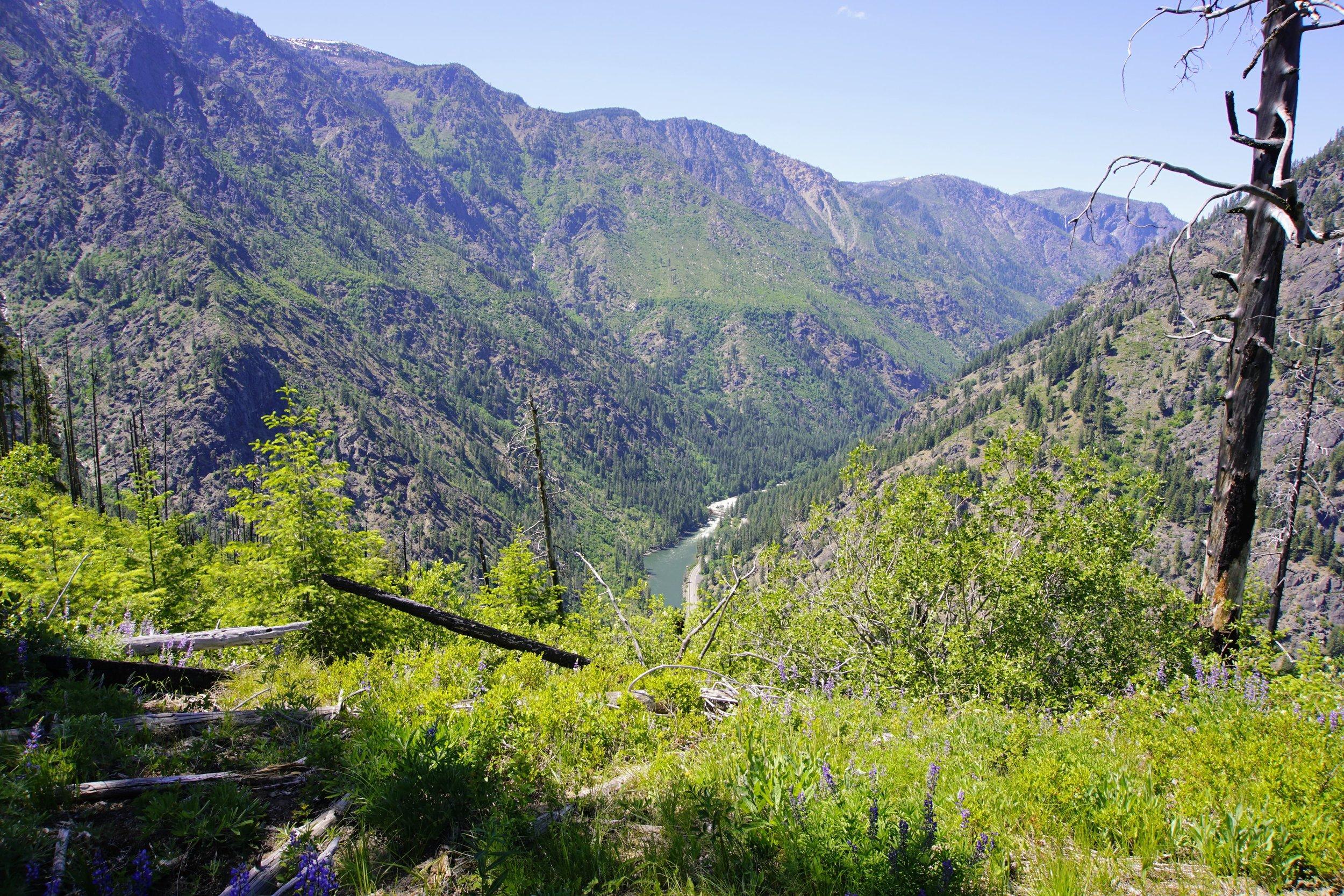 Wenatchee River down below