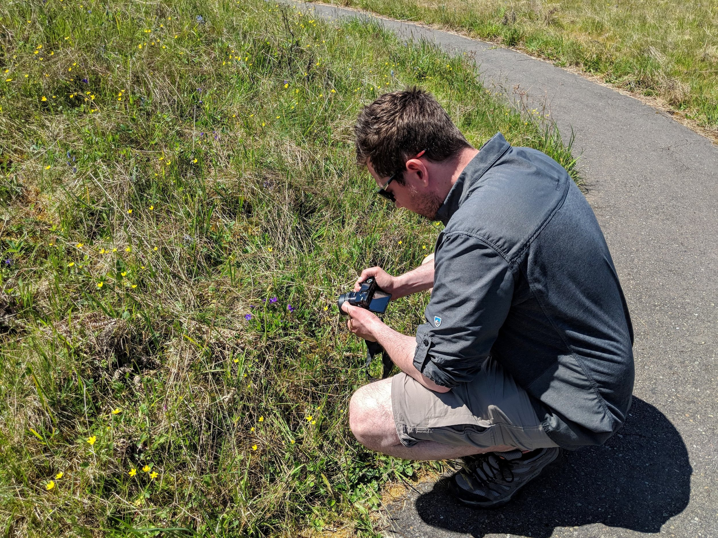 Taking photos of the many flowers at Mima Mounds