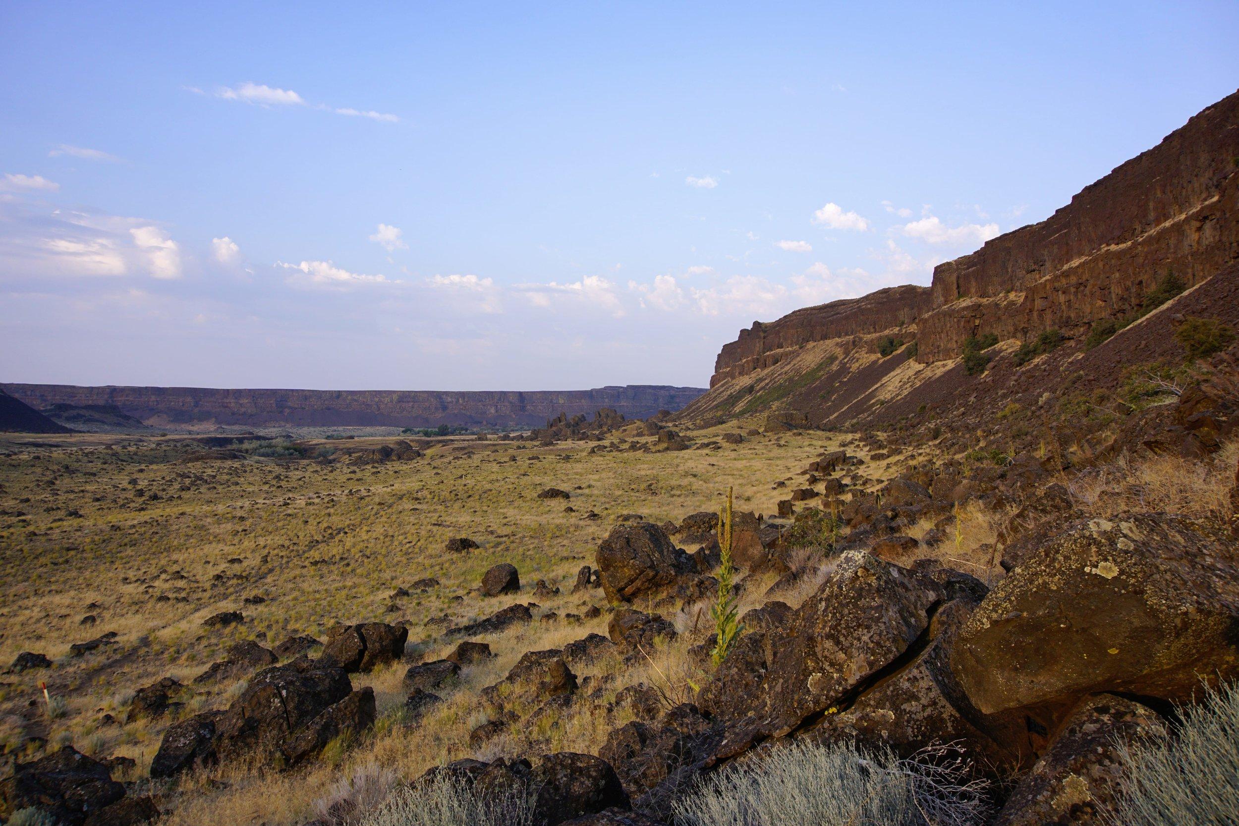 Southwest views
