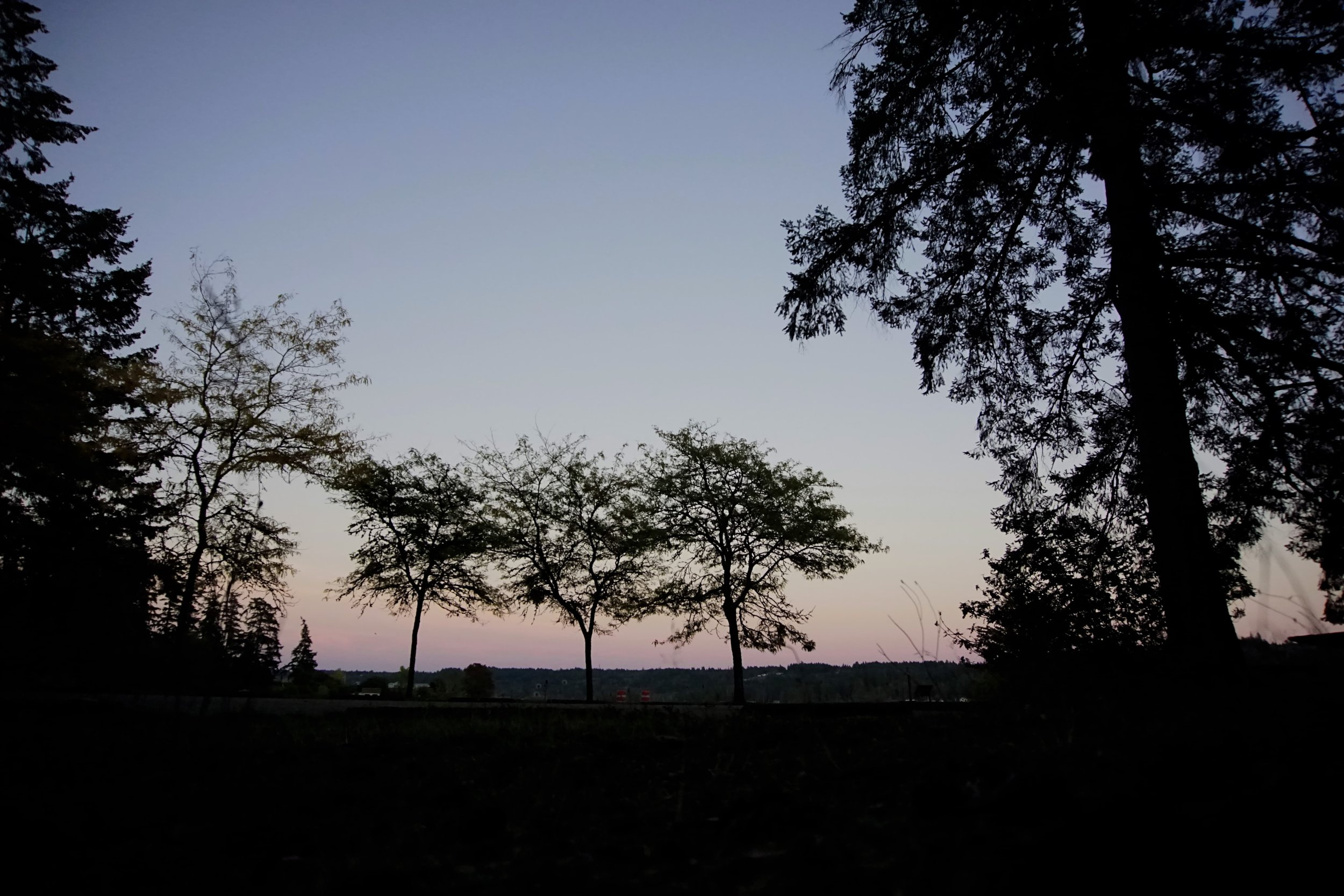 Dusk at Belfair State Park