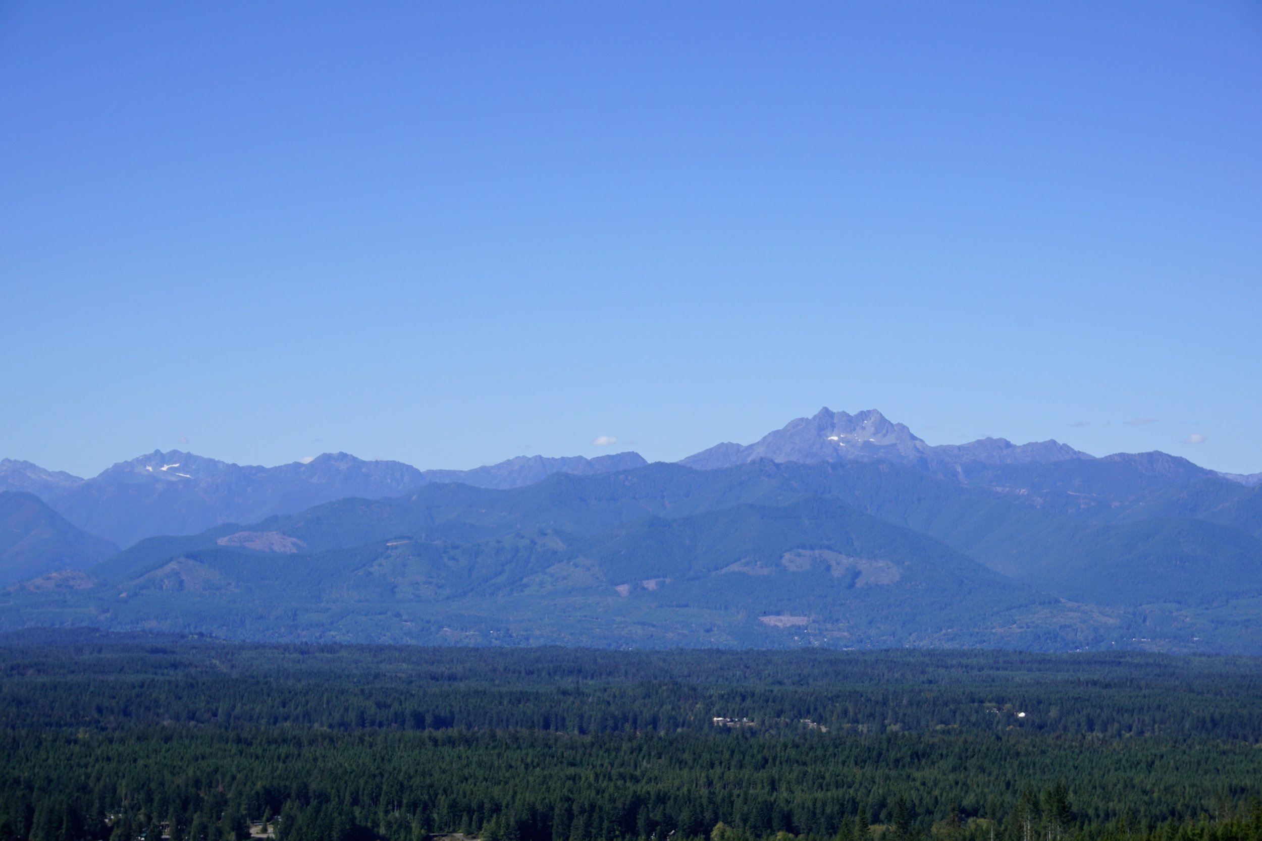 Views of the Olympic Mountains from Gold Creek Trail