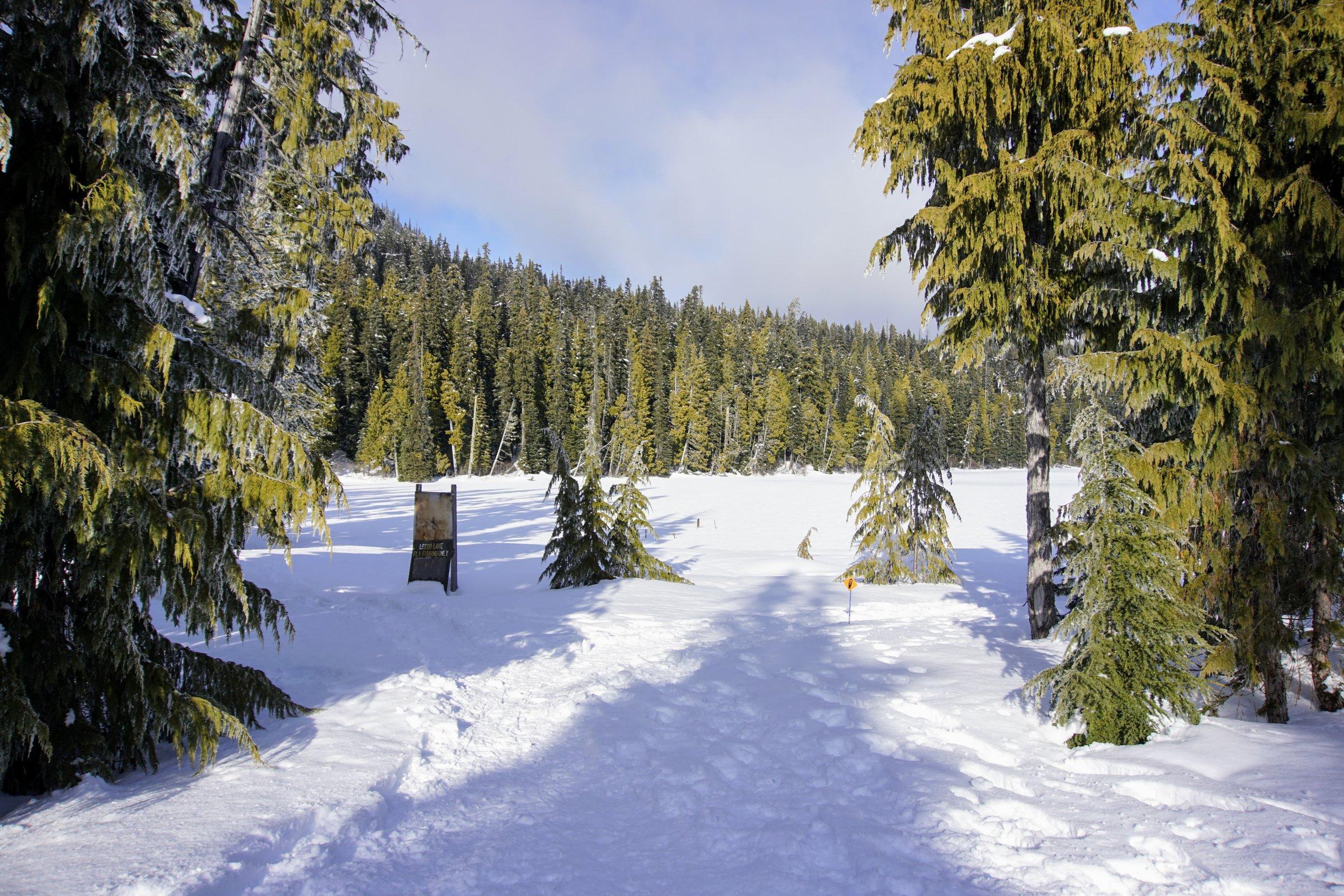 Snowshoeing trailhead