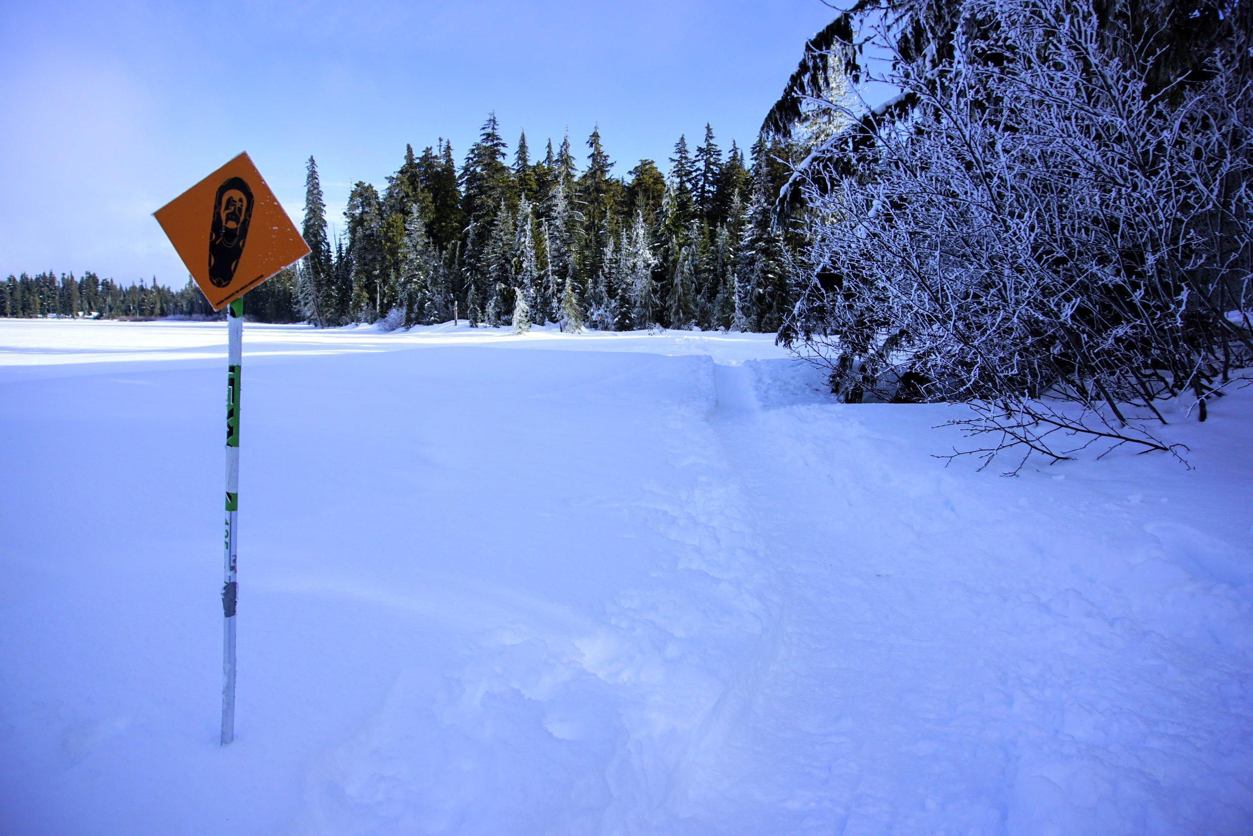 Snowshoe trail marker