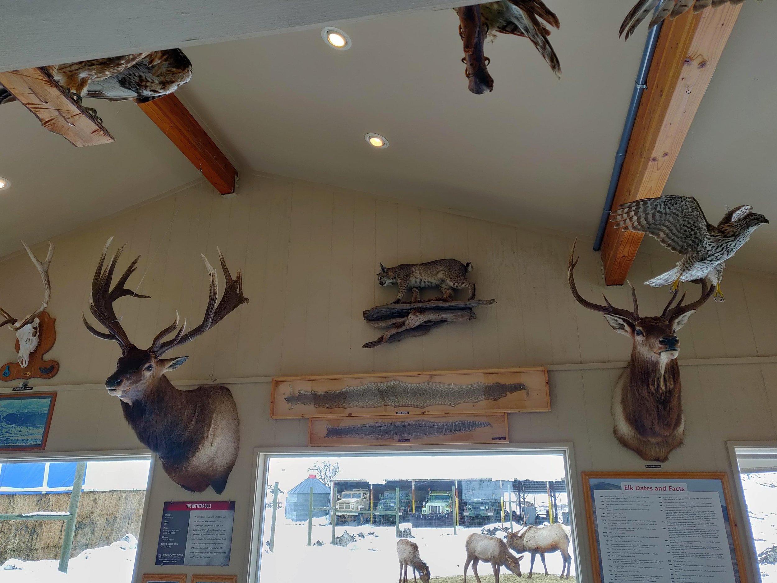 Oak Creek Wildlife Area 03.jpg