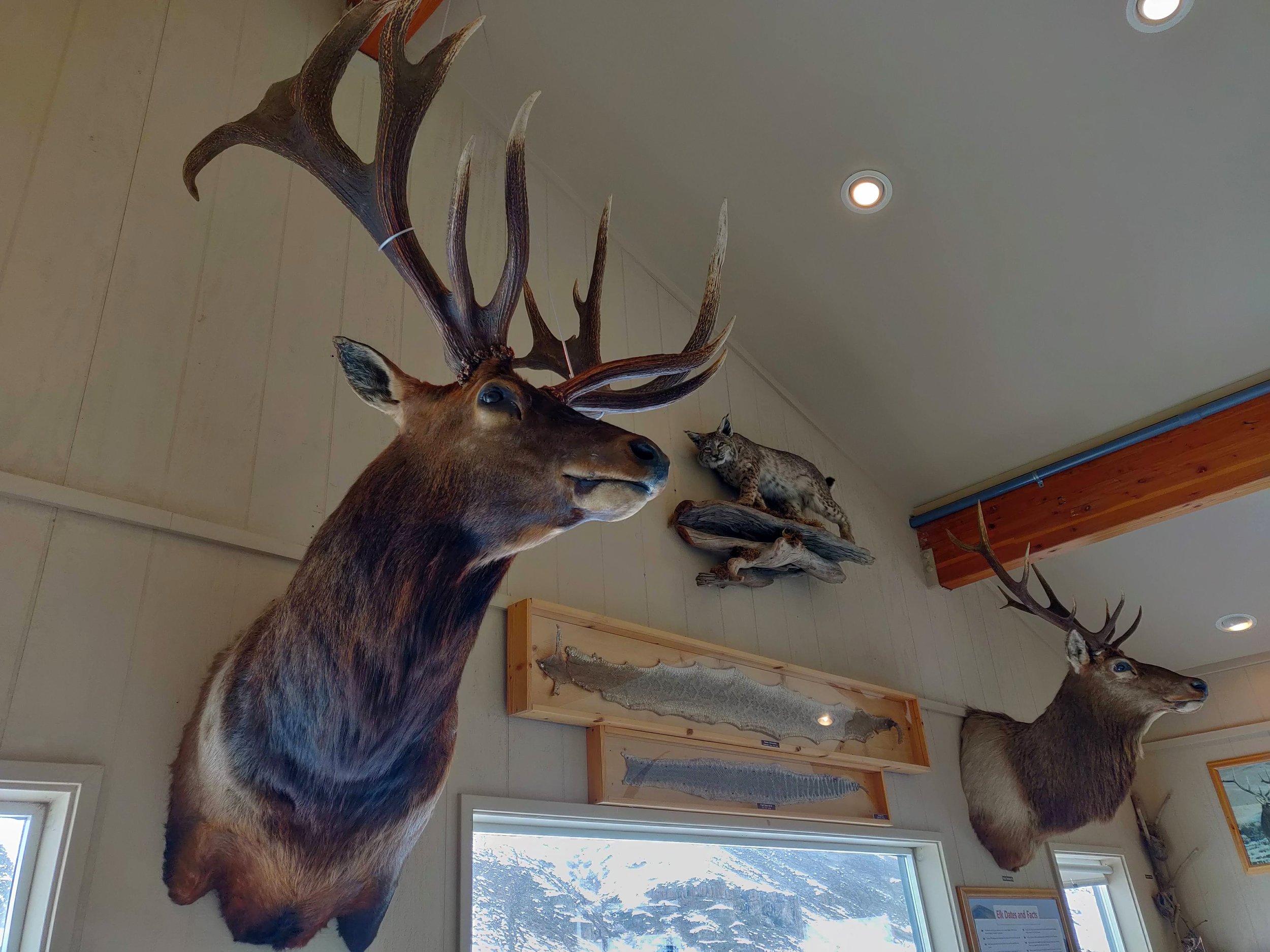 Oak Creek Wildlife Area 01.jpg