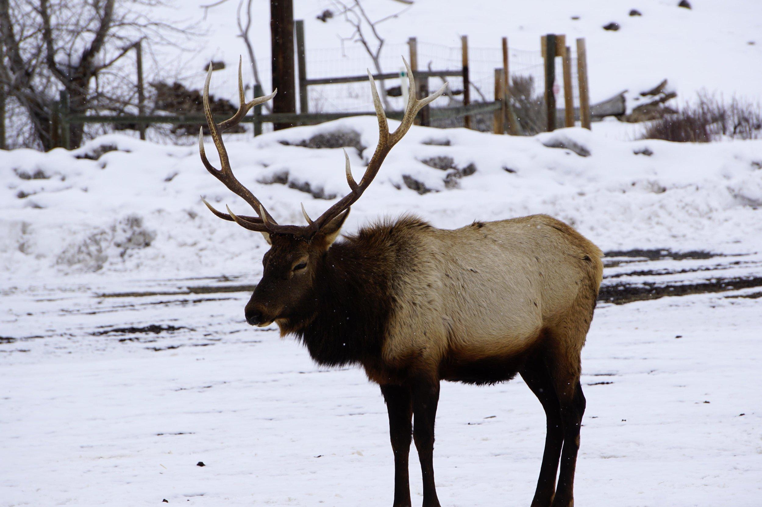 Oak Creek Wildlife Area 10.JPG