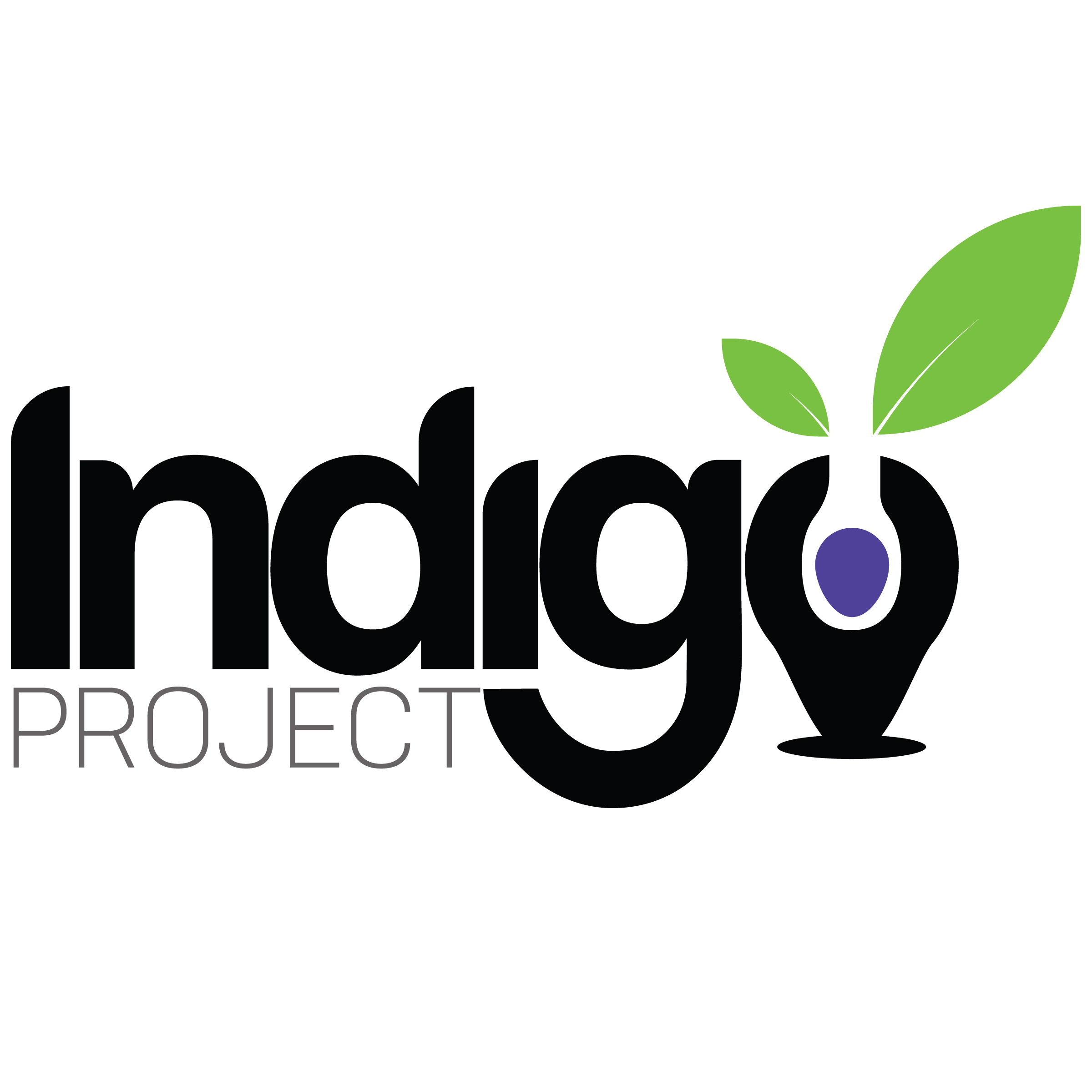 IndigoProject no tag sm.jpg