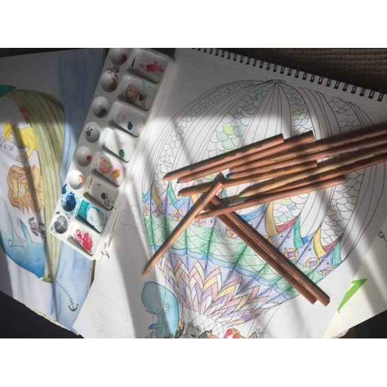 A few of my pieces coming to life, with my favourite Watercolour pencils, by Prismacolor.