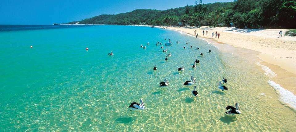 Deals-I-Love-Moreton-Bay-Cruise-slider1.jpg
