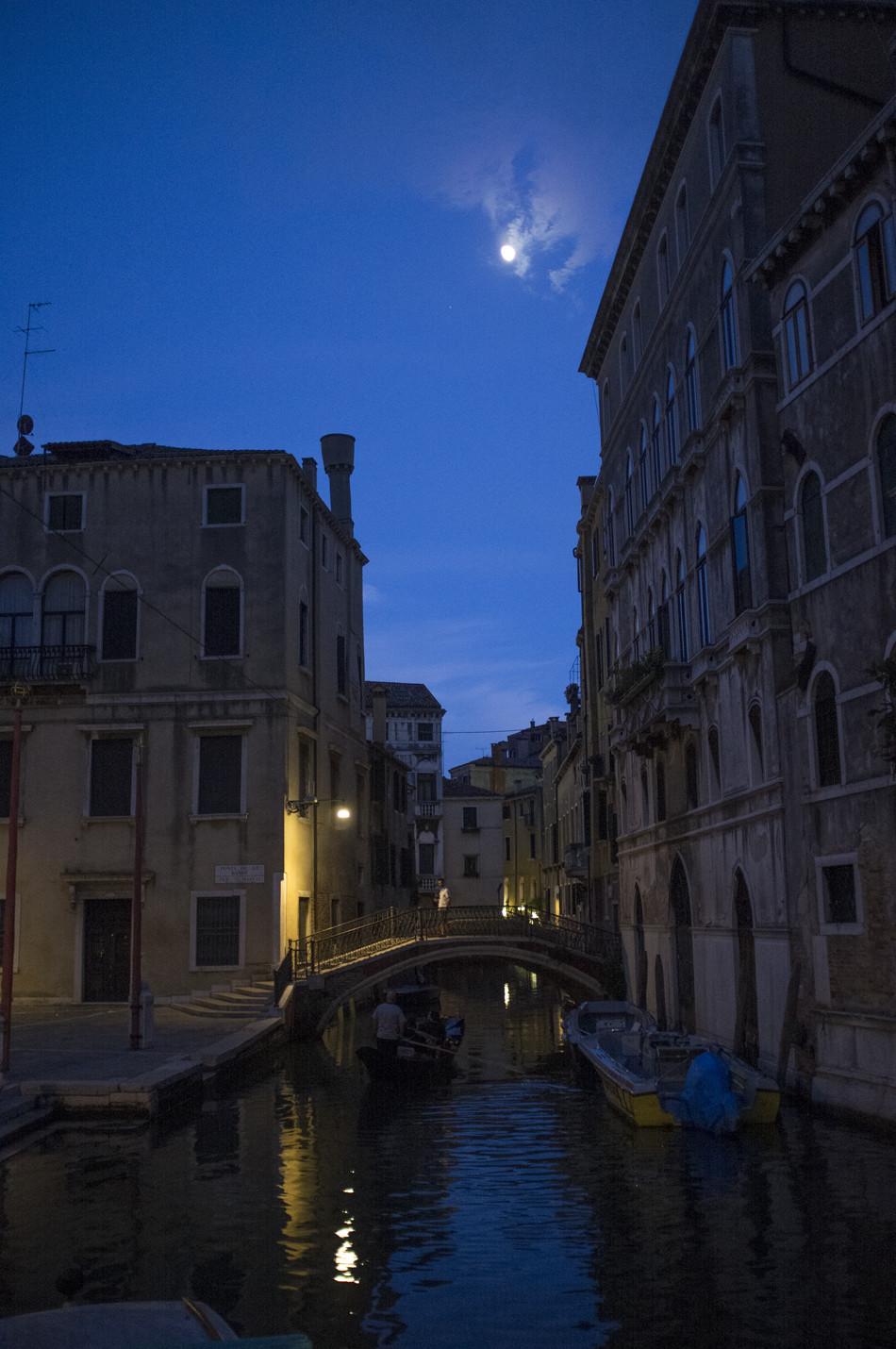 Venice, 2015