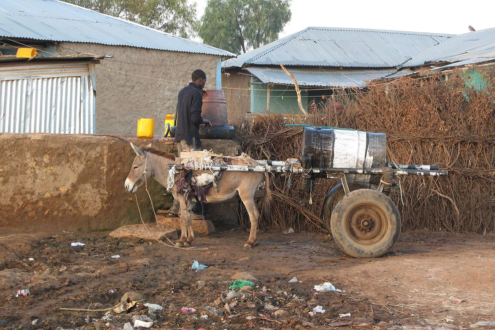 donkey carts