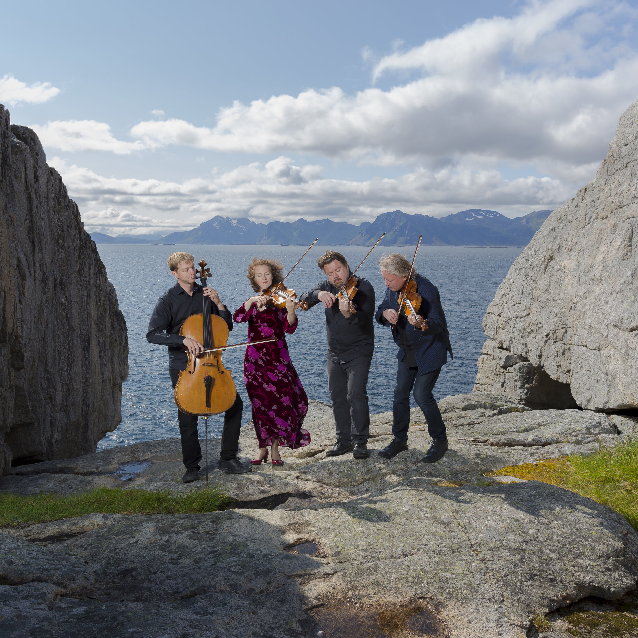 Engegård Quartet - photo: Espen Mortensen