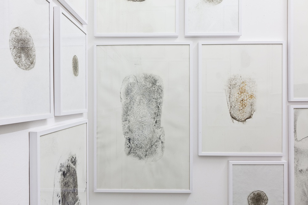 Moules (Water Prints)  , Hélène Thensiau  , and Lima Drib  ,   2015 (  river water, various metals on paper  ), detail, Galleria Continua, San Gimignano / Beijing / Les Moulins / Habana. Photo by: Ela Bialkowska.