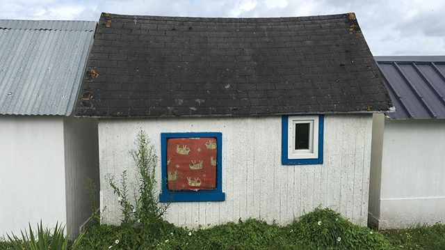 """""""beach hut""""  Camino Welt chapter.erbe (25), day four: #30july from #douarnenez to #plomodiern  Less Not More. (Brown Ochre, Cobalt Blue, and Indian Red)  #variousartists on a #carandache induced #colourwalk  while listening to #lessnotmore (looping) by #theresidents #camino #grimpillage Camino Welt is a reverse pilgrimage by Various Artists, a walk from Santiago de Compostela to Ostend following the coastlines of south-western Europe and keeping the sea on the left. The walk from south to north evolves into a search for #commercialism and brings Various Artists in a state of constant temptation and contamination while collaborating, influencing and sometimes sabotaging each other into a frenzy of overproduction."""