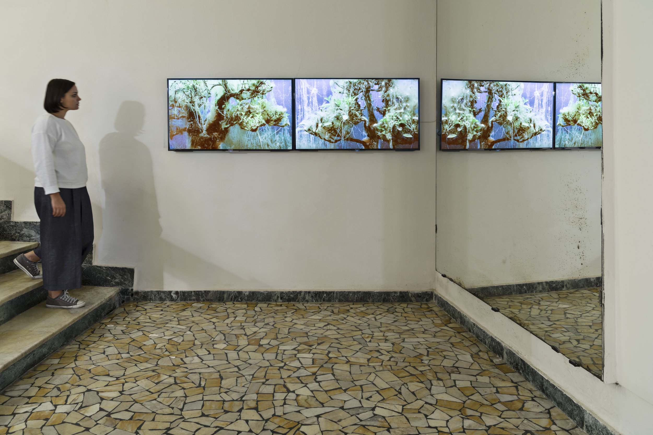 Various Artists.BLFHTH, 3 Bomen, Drown.ke, pae and io, Galleria Continua, San Gimignano, 2015, video, 2 screens, compositing: Alexis Destoop & Devi Mallal. Photo by:   Ela Bialkowska