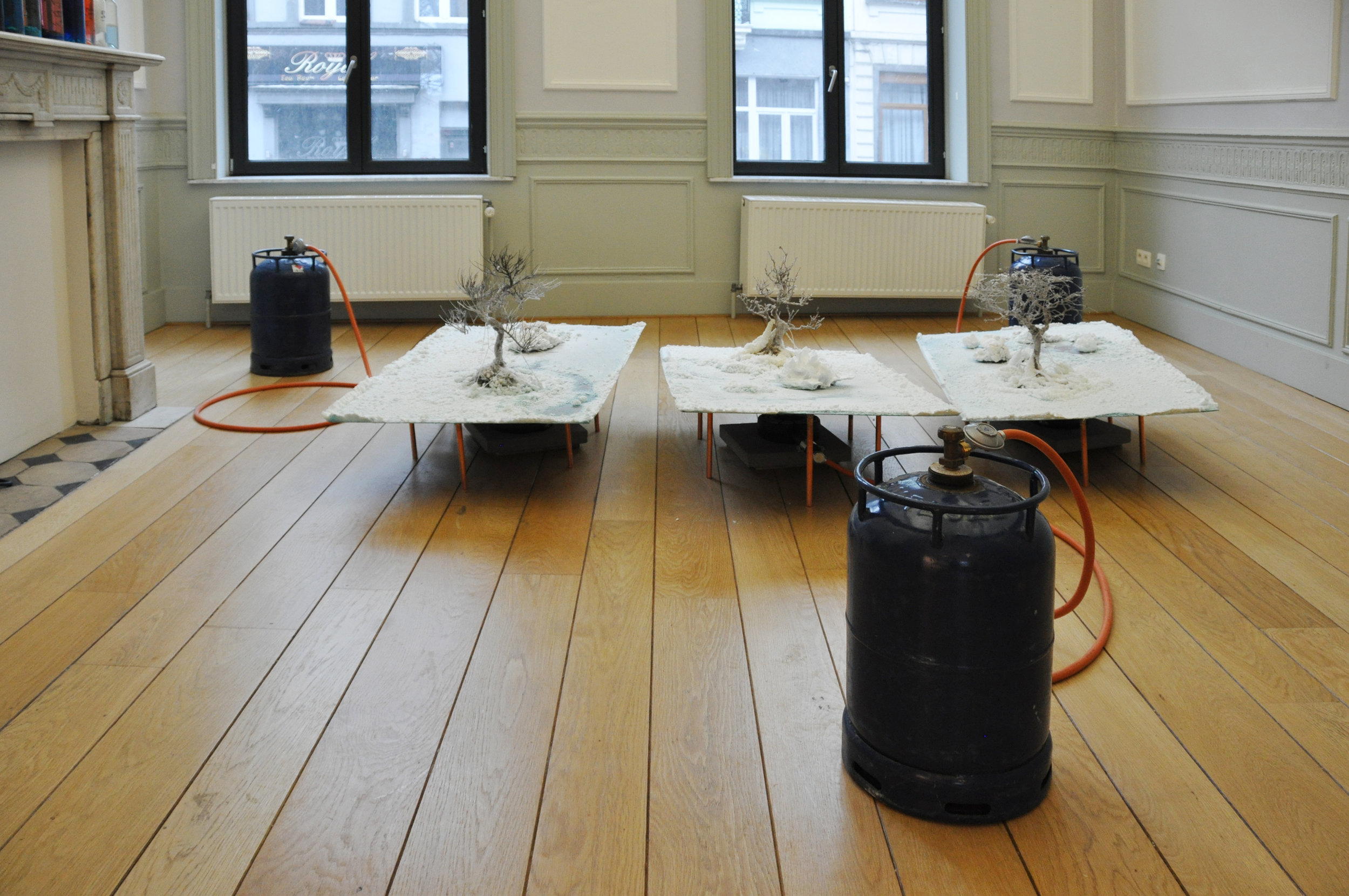 Salinas, 2017, Burners, Gas-bottles, copper plates, bonsai and salt. Installation view at Morpho, Brussels. Photo by:   Kiki Petratou