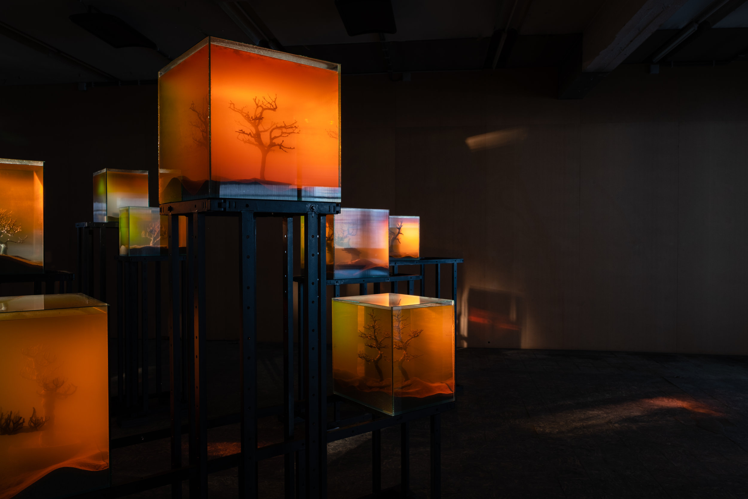 Various Artists, 'toxiThropea.sunset' (2019), in 'Deadly Affairs' (23.03-30.06.2019), Kunsthal Extra City, Antwerp, photo by Tomas Uyttendaele_12.jpg