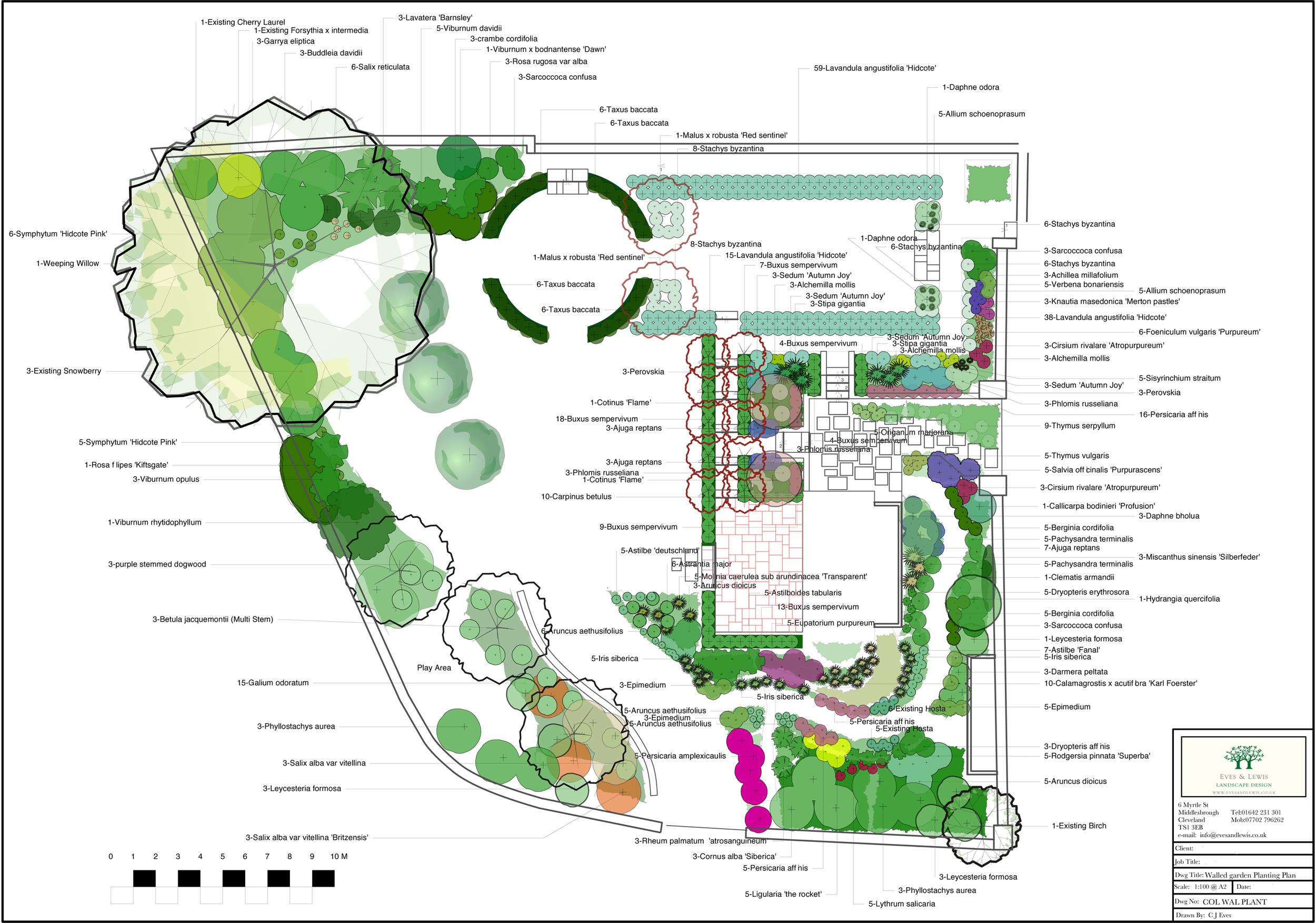 Stampley moss planting plan.jpg