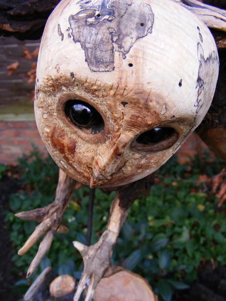 Driftwood Owl by Karen Lewis MA