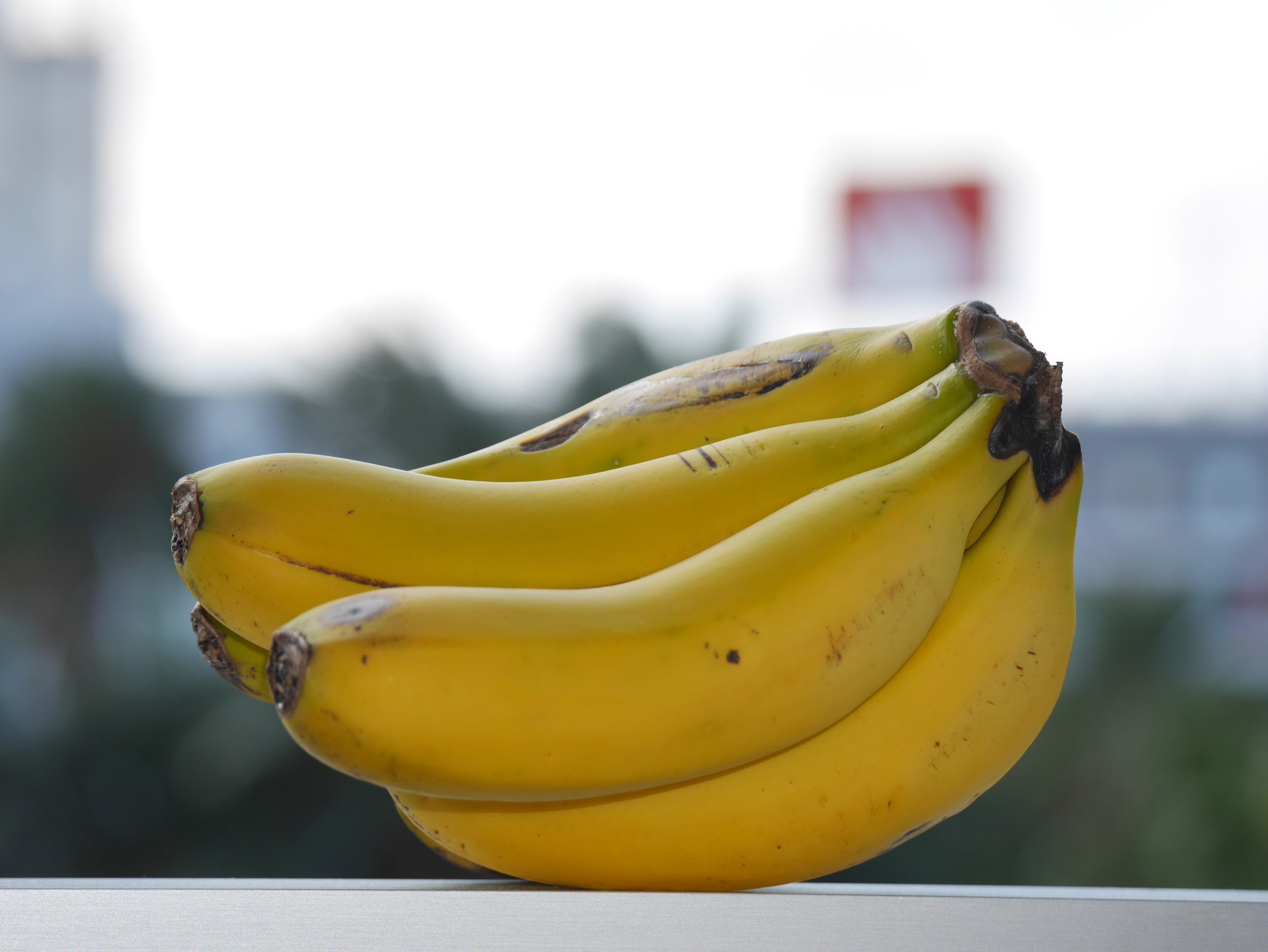 De små, søte kanariske bananene er rike påsmak og påstås å være best i verden.