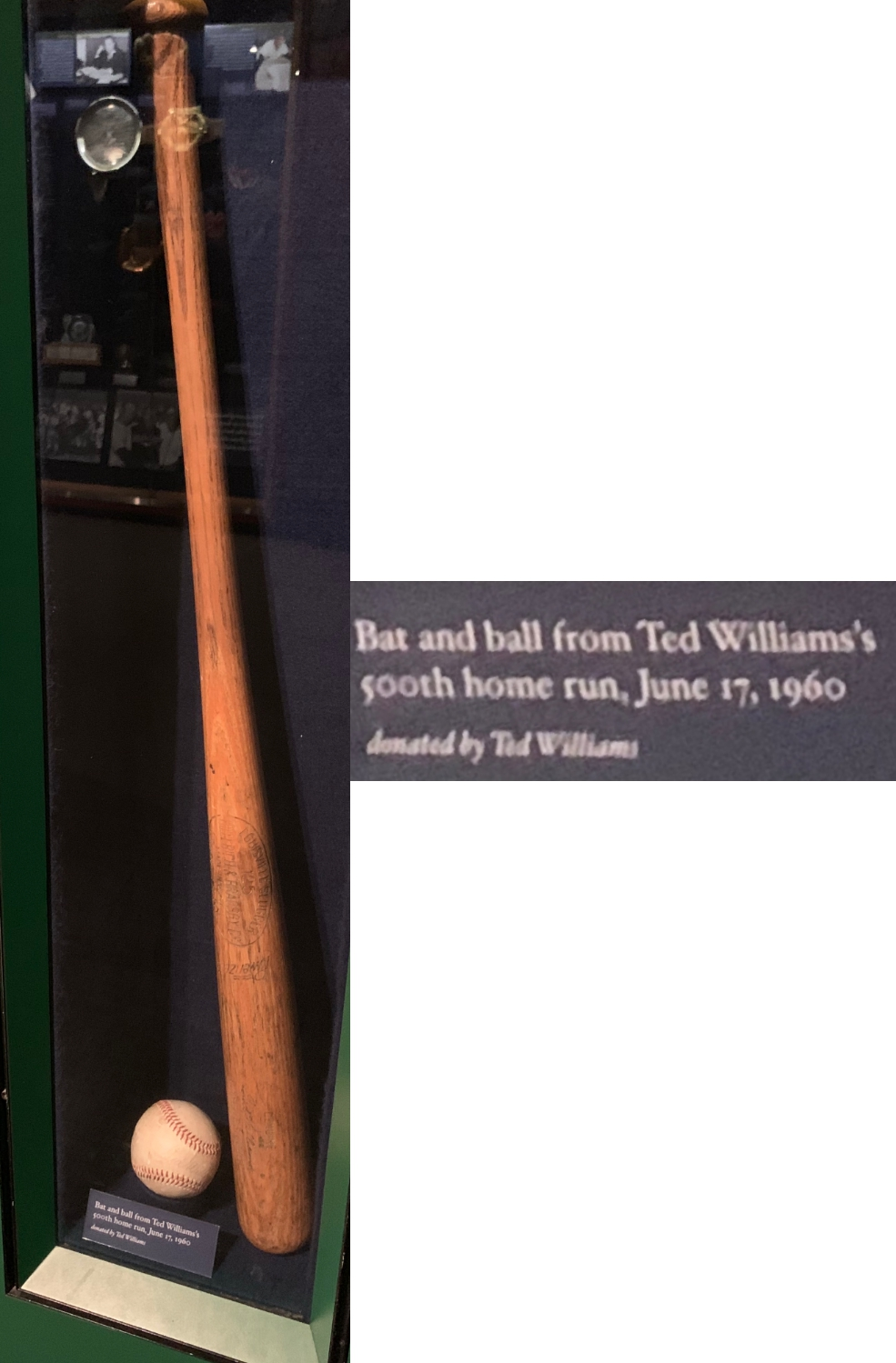 Williams Bat Final.jpg