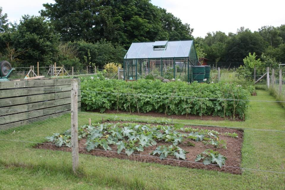 Fordfield fruit and Vegetable Allotment