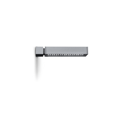 PARK  Wall Mounted Large  Spec  ►  IES/CAD  ►