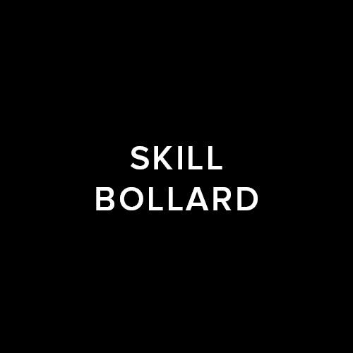 42_SKILL_BOLLARD.jpg
