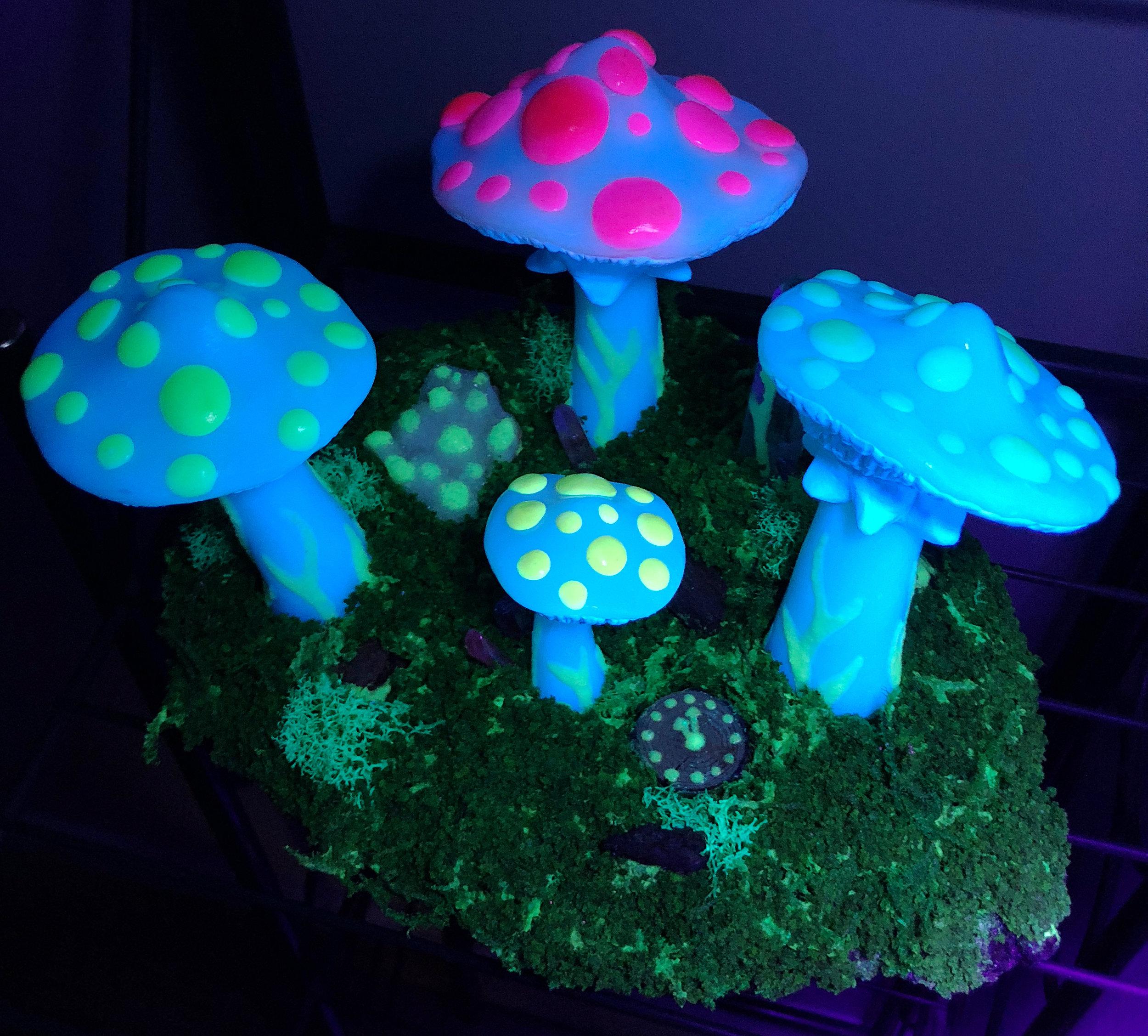 Mushroom Kingdom (Blacklight) - JD Shanley.jpg