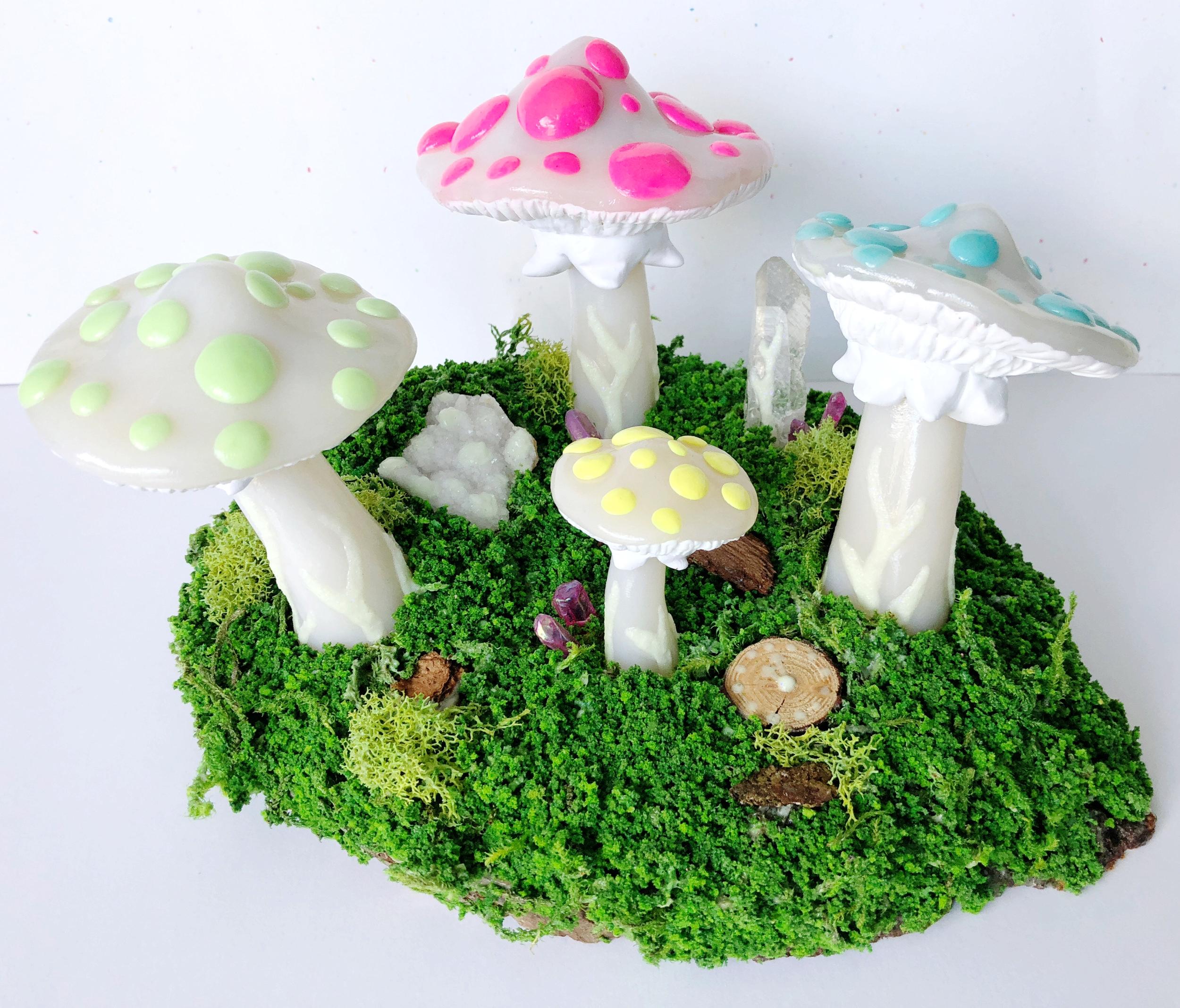 Mushroom Kingdom - JD Shanley.jpg